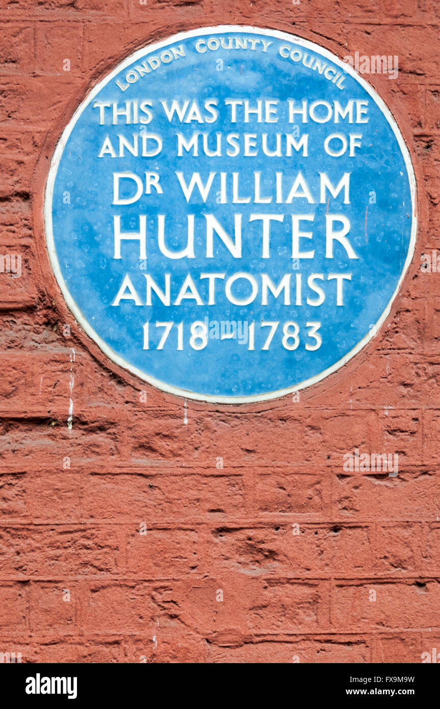 A blue plaque on the rear of the Lyric Theatre in Great Windmill Street, the home and museum of the anatomist Dr - Stock Image