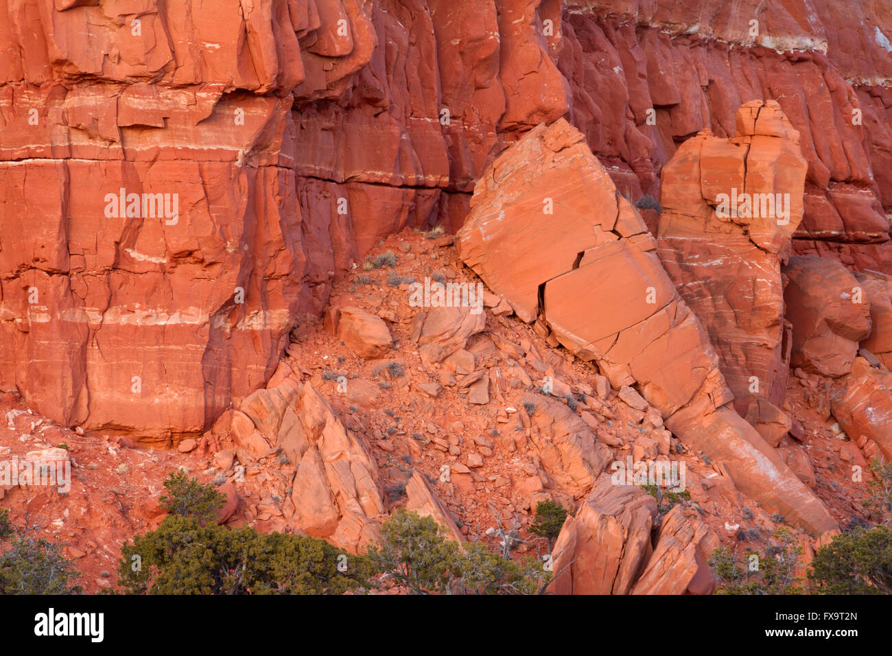 An example of the fragile 'Old Red Sandstone' rock that is found all over the Colorado Plateau. Thoreau, - Stock Image