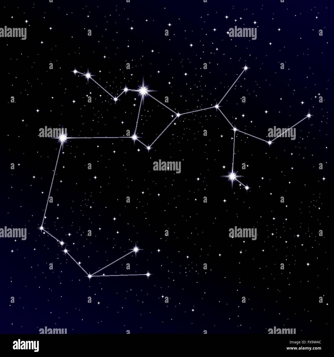 Sagittarius constellation Stock Vector Art & Illustration