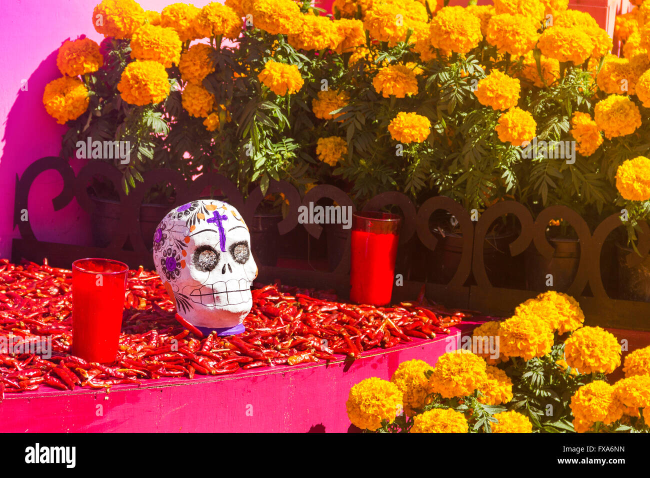 chile and flowers, dia de muertos celebration Stock Photo: 102257729 ...
