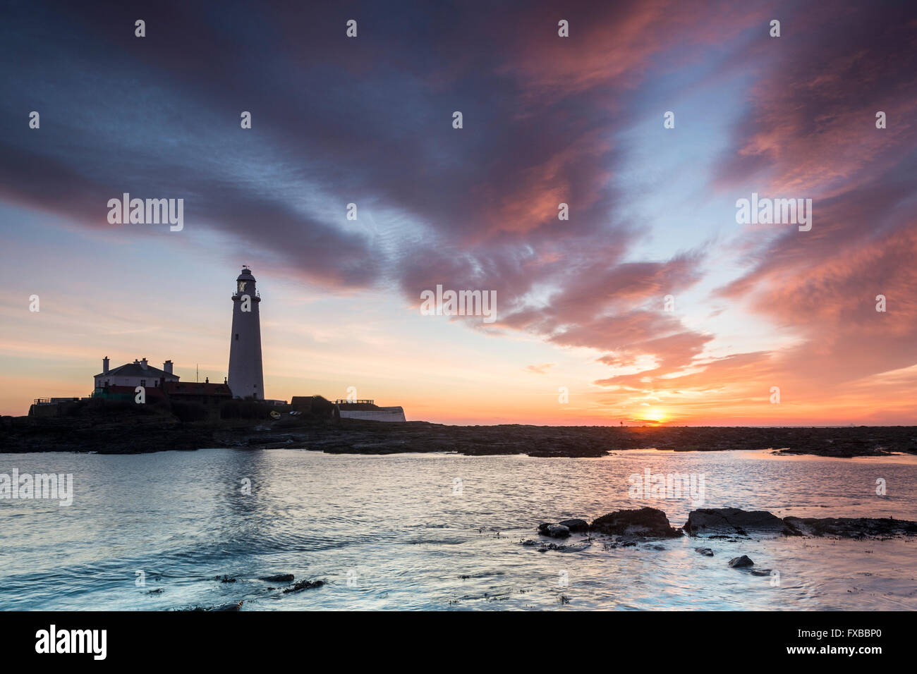 St. Mary's Lighthouse in the morning light. There is a siluette of a man walking on the path against the sun Stock Photo