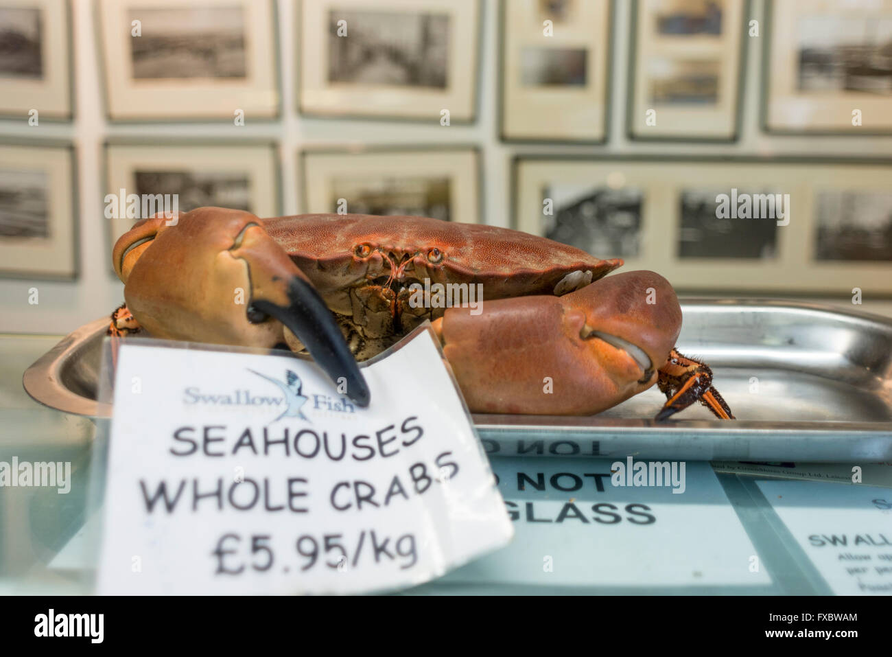 Swallow Fish, Seahouses, Northumberland - Stock Image