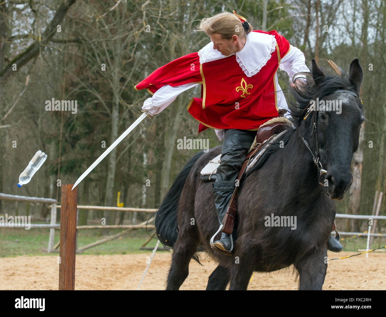 Muencheberg, Germany. 04th Apr, 2016. Stunt rider Christian Scholle-Prestin rides his horse Fritz at full gallop - Stock Image