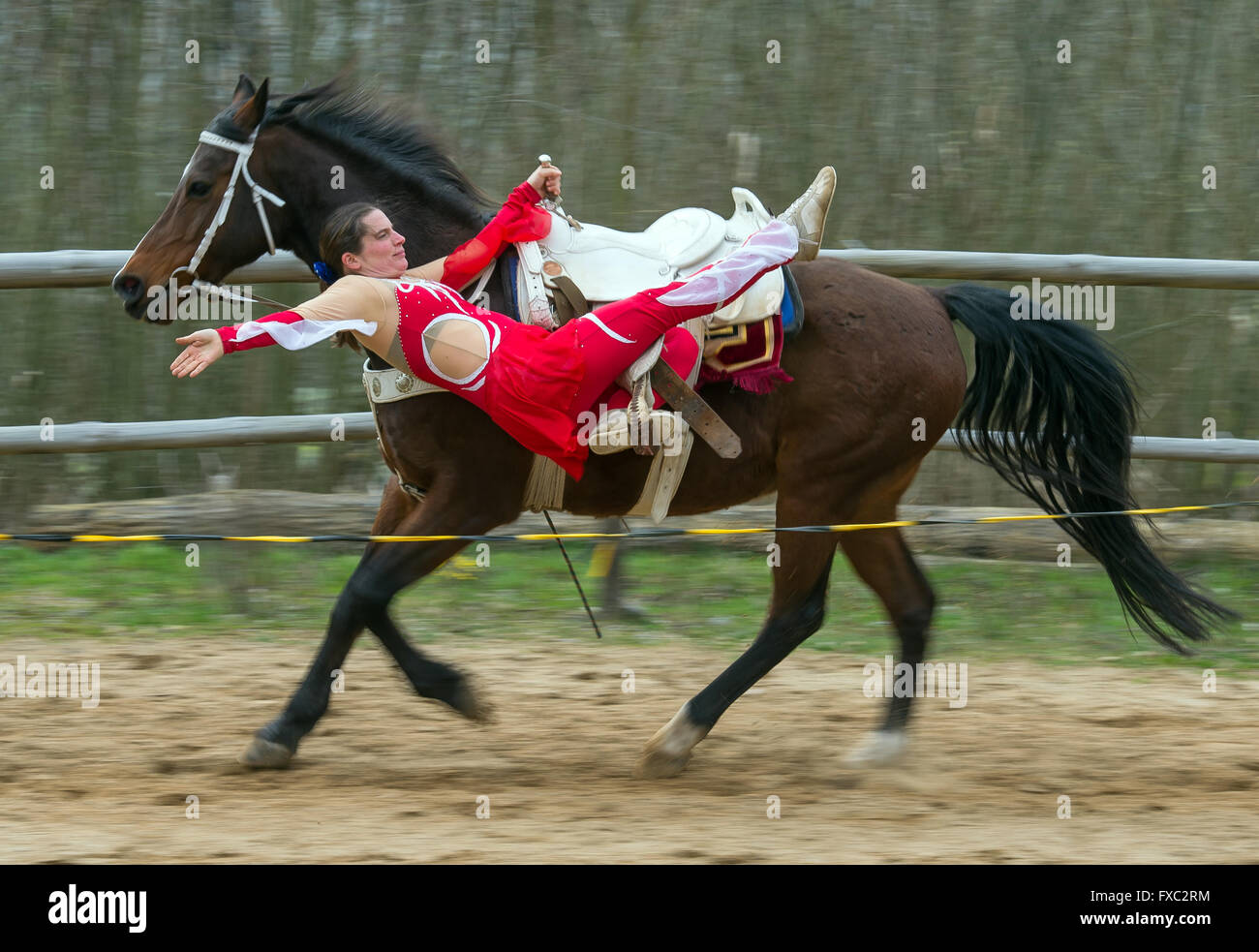 Muencheberg, Germany. 04th Apr, 2016. Stunt rider Daja Ziefuss rides her horse Eden and shows off a trick at Sunbow - Stock Image