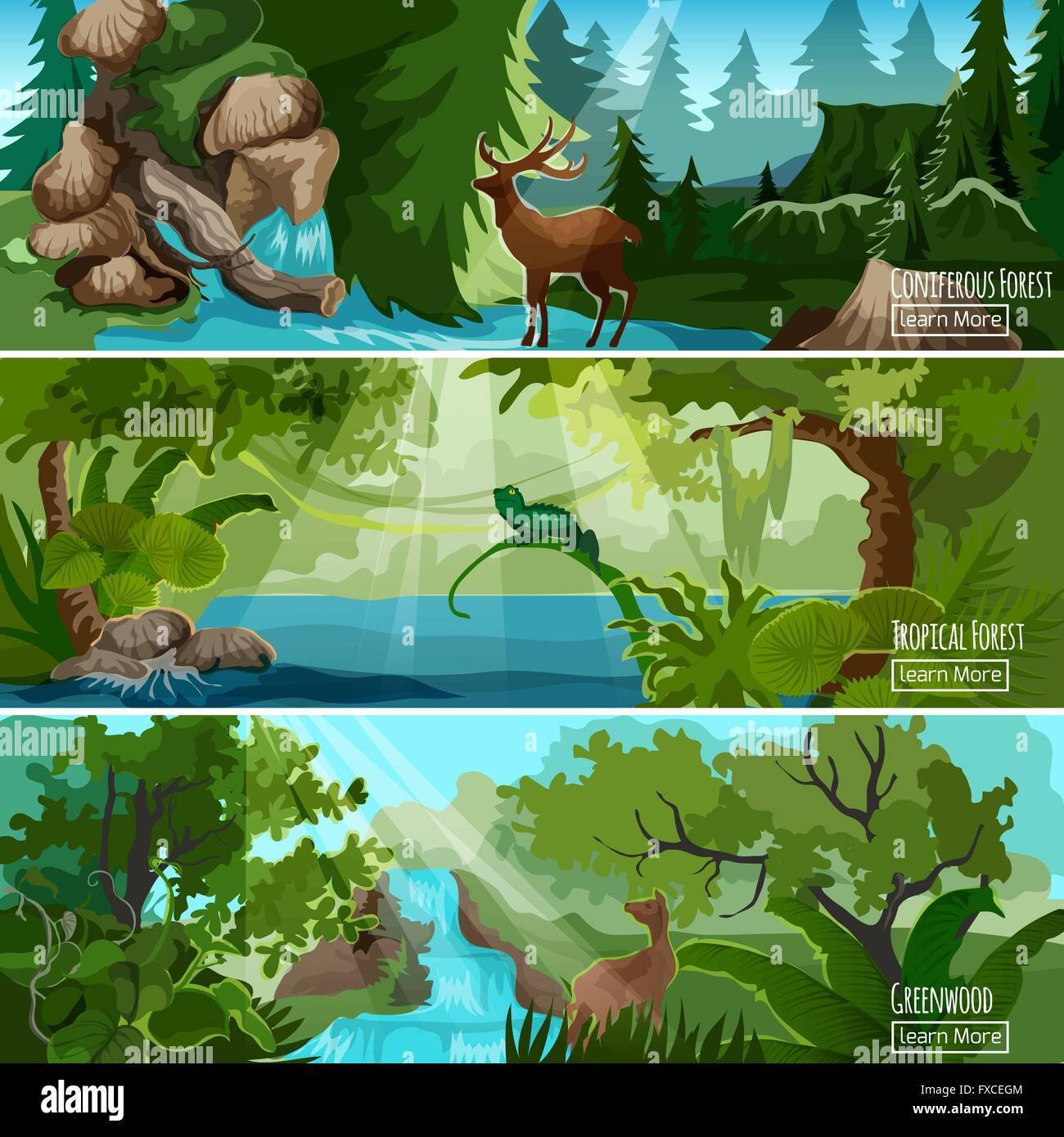 forest landscape horizontal banners set stock vector art