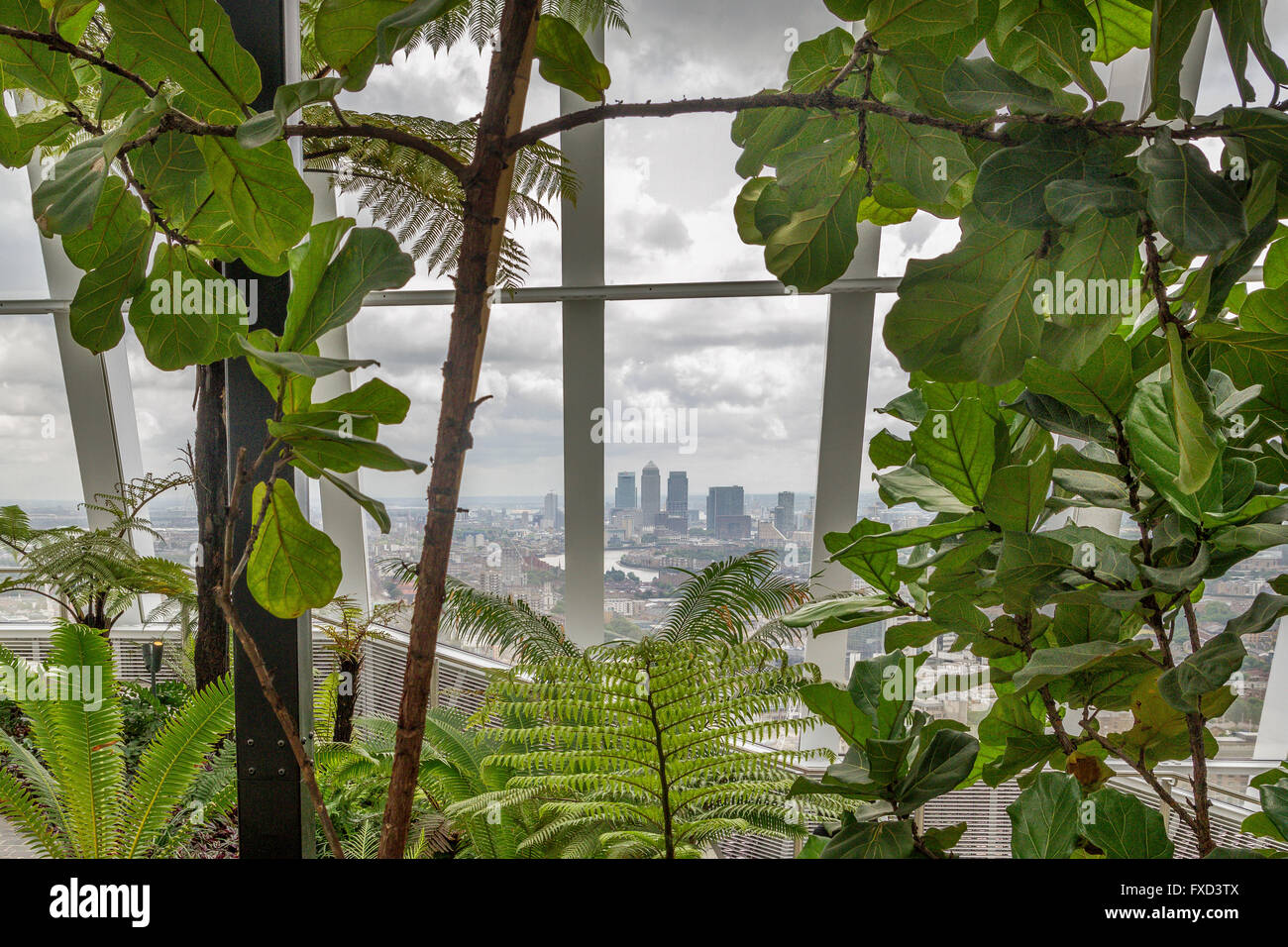 The Sky Garden ,at the Top of 20 Fenchurch St, or Walkie Talkie Building. One of London's best views with a - Stock Image