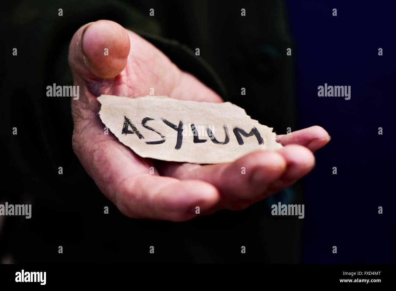 closeup of the hand of an old man with a piece of paper with the word asylum, with a dramatic effect - Stock Image