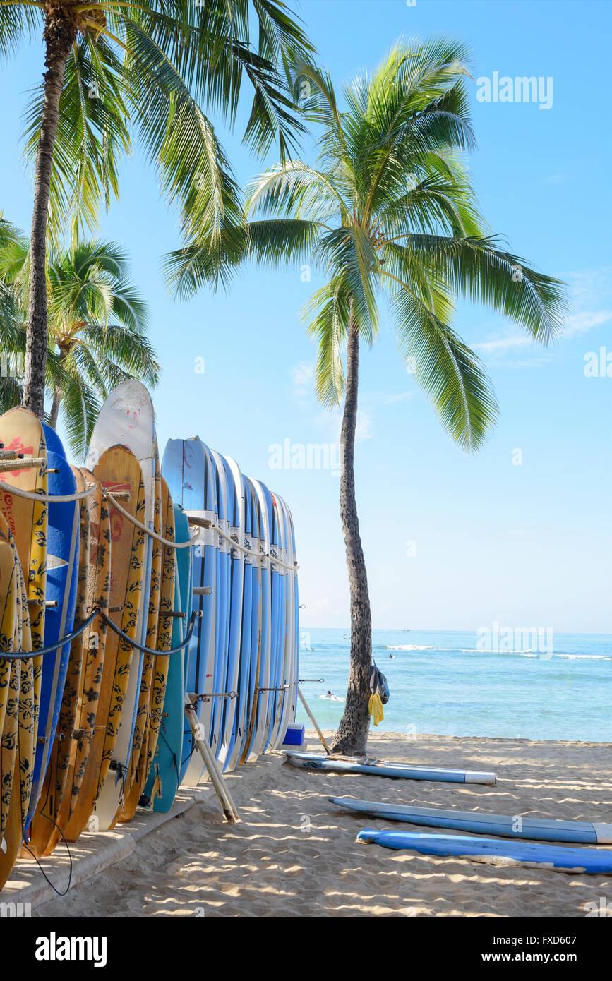 USA, Hawaii, Oahu, Honolulu, Waikiki, beach with surf boards - Stock Image