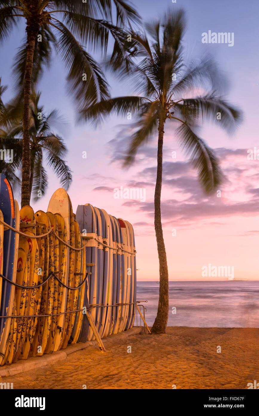 USA, Hawaii, Oahu, Waikiki Beach at sunset - Stock Image