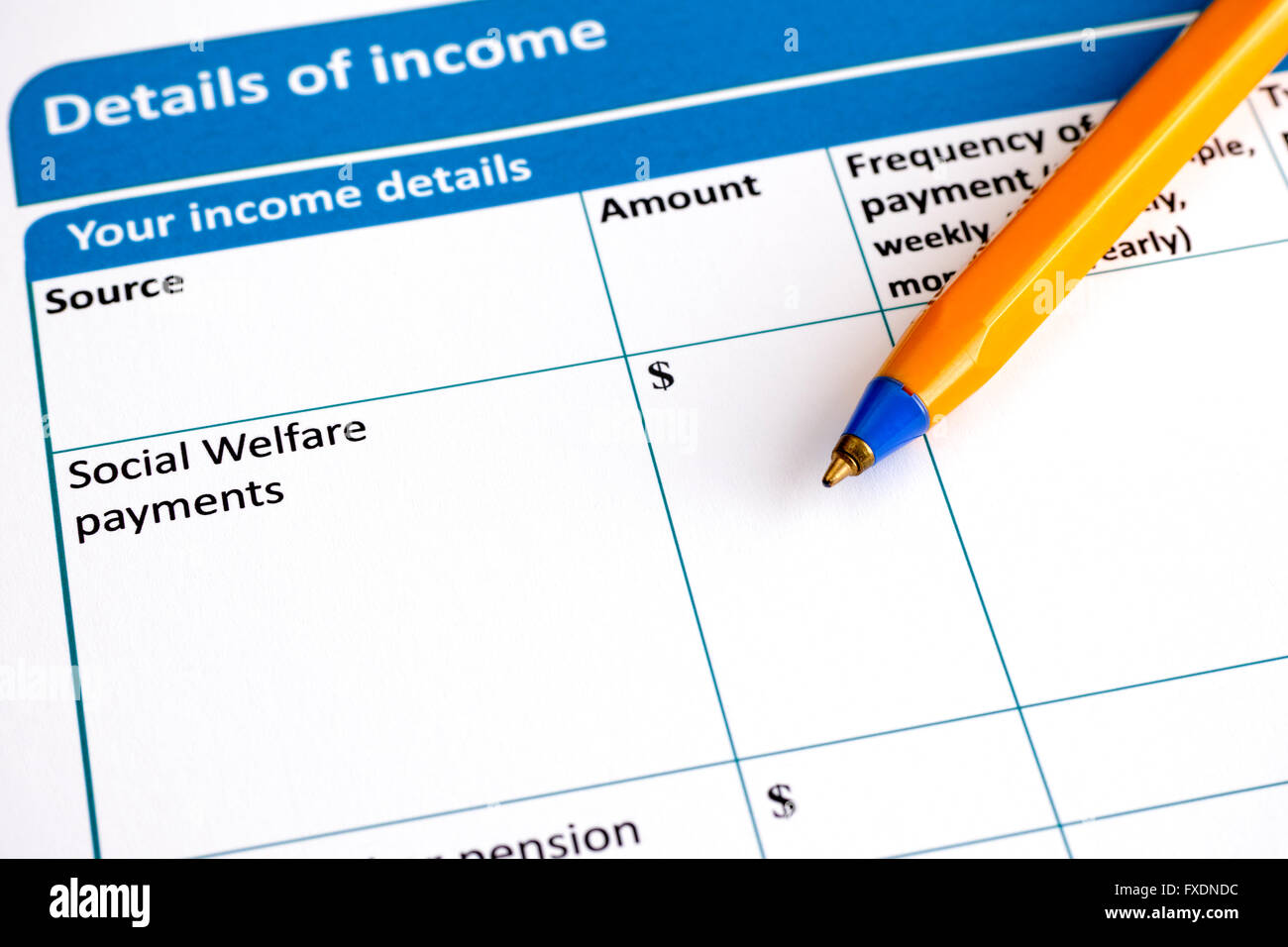 Details of income application form with ballpoint pen. Stock Photo