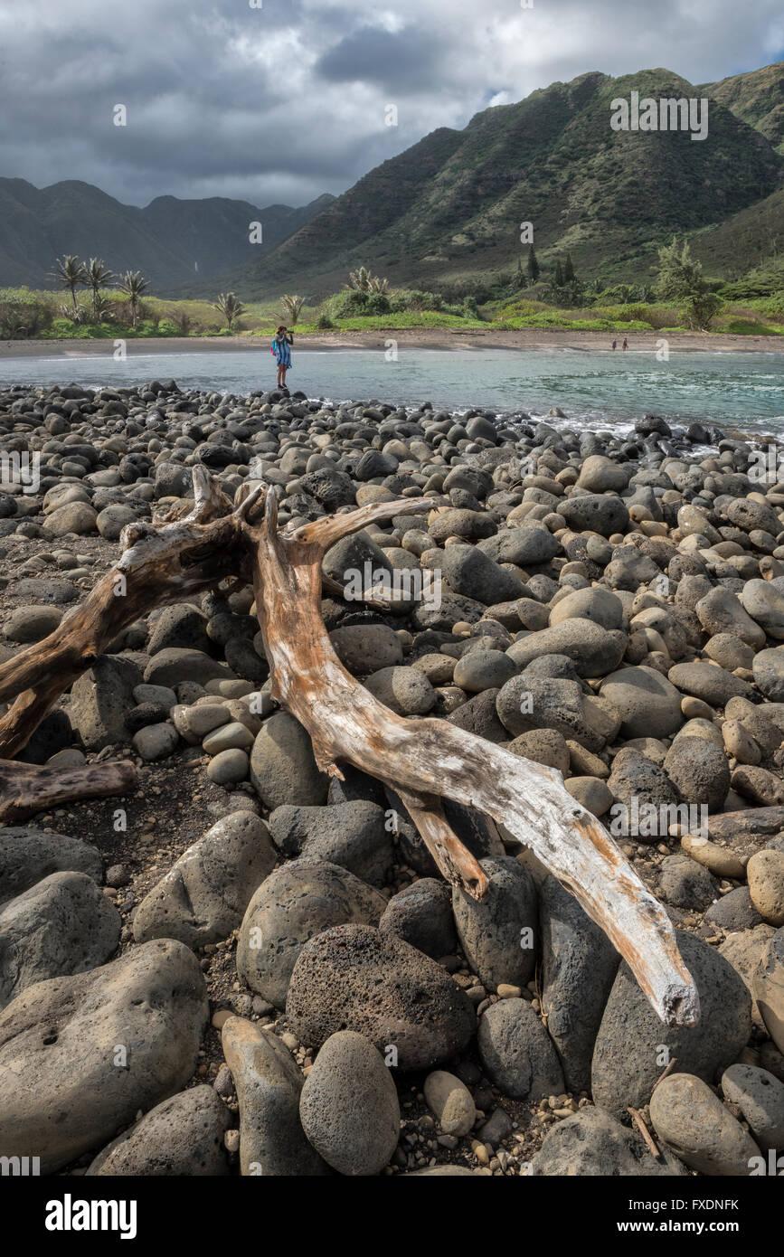 USA, Hawaii, Molokai, tropical, Halawa valley, - Stock Image