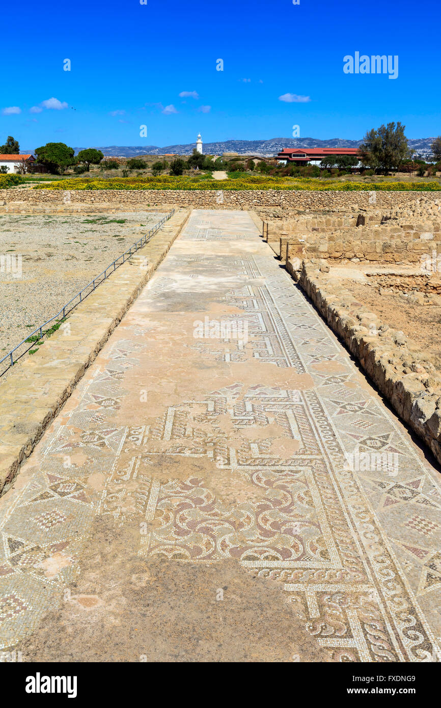 Ancient mosaics at the Archaeological Helenistic and Roman site at Kato Paphos in Cyprus. Stock Photo