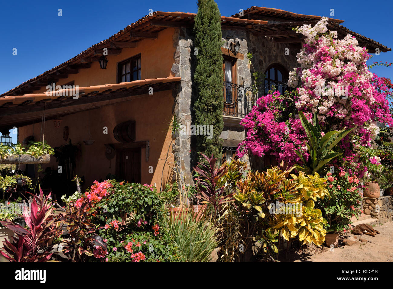 Hacienda with flowers in San Sebastian del Oeste Mexico at tequila factory - Stock Image