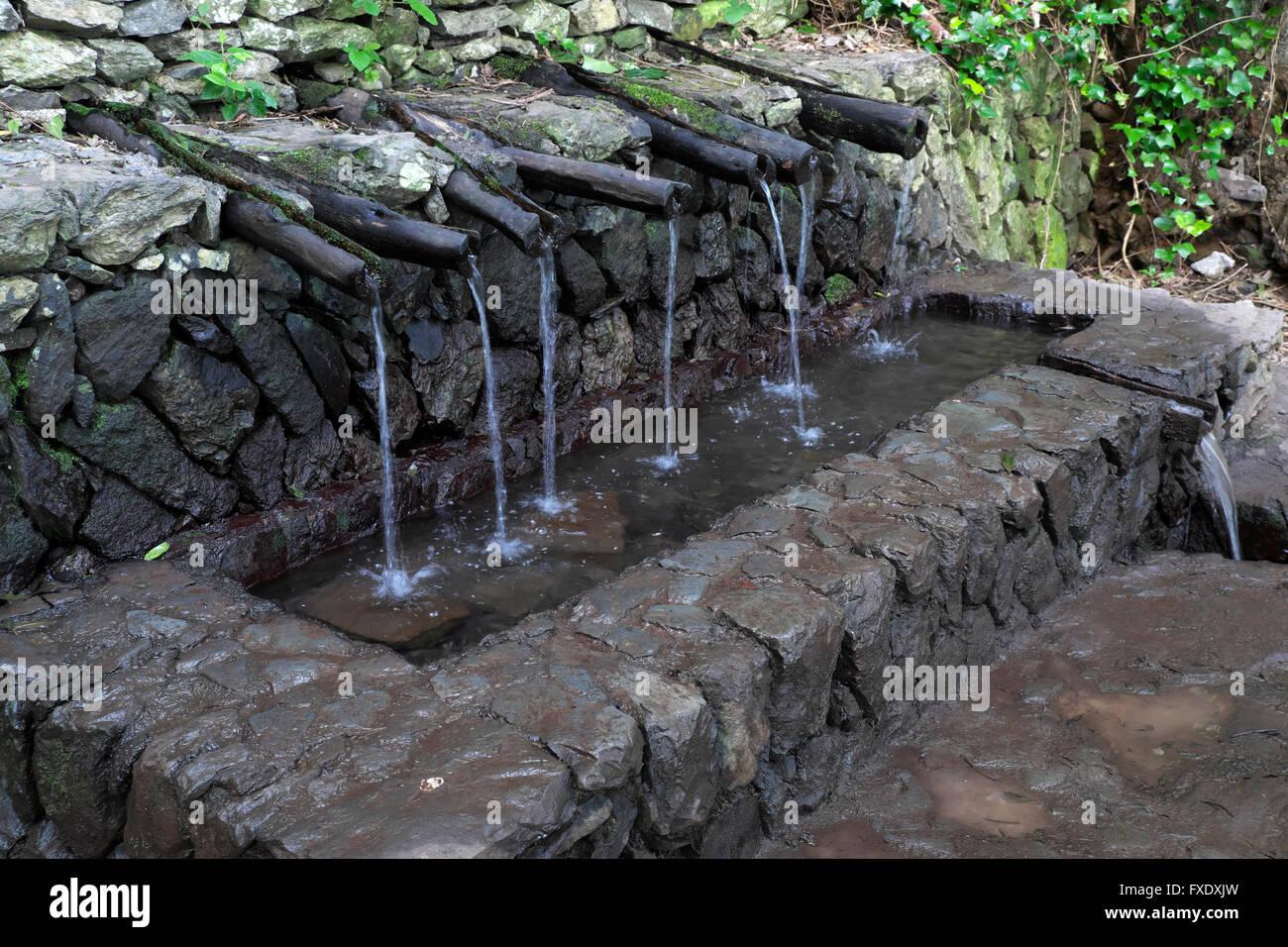 Miraculous healing spring Chorros de Epina, La Gomera, Canary Islands, Spain - Stock Image