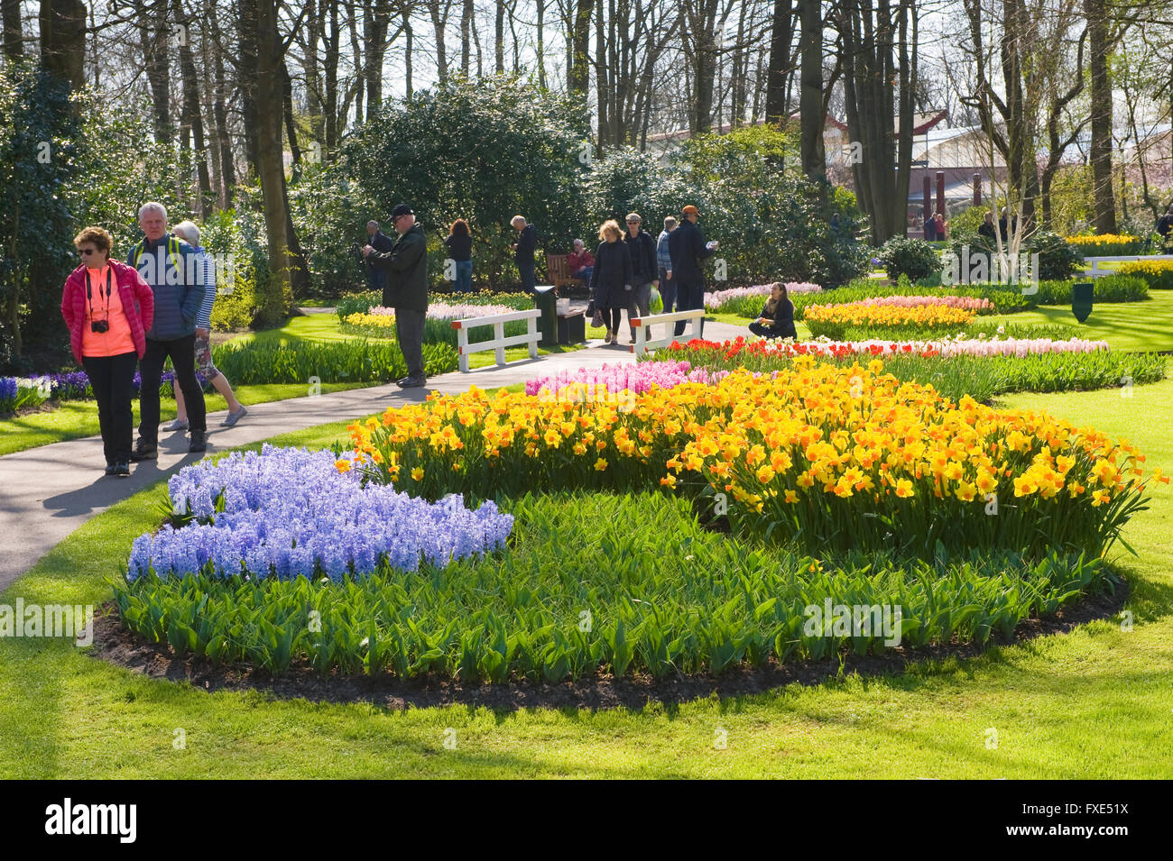 Tourists are visiting 'the Keukenhof' in the spring. The Keukenhof is a popular flower garden. - Stock Image