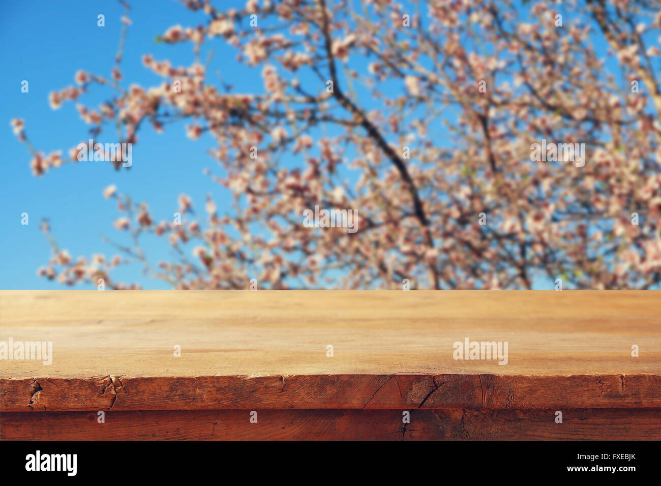 wooden rustic table in front of spring white cherry blossoms tree. vintage filtered image. product display and picnic - Stock Image