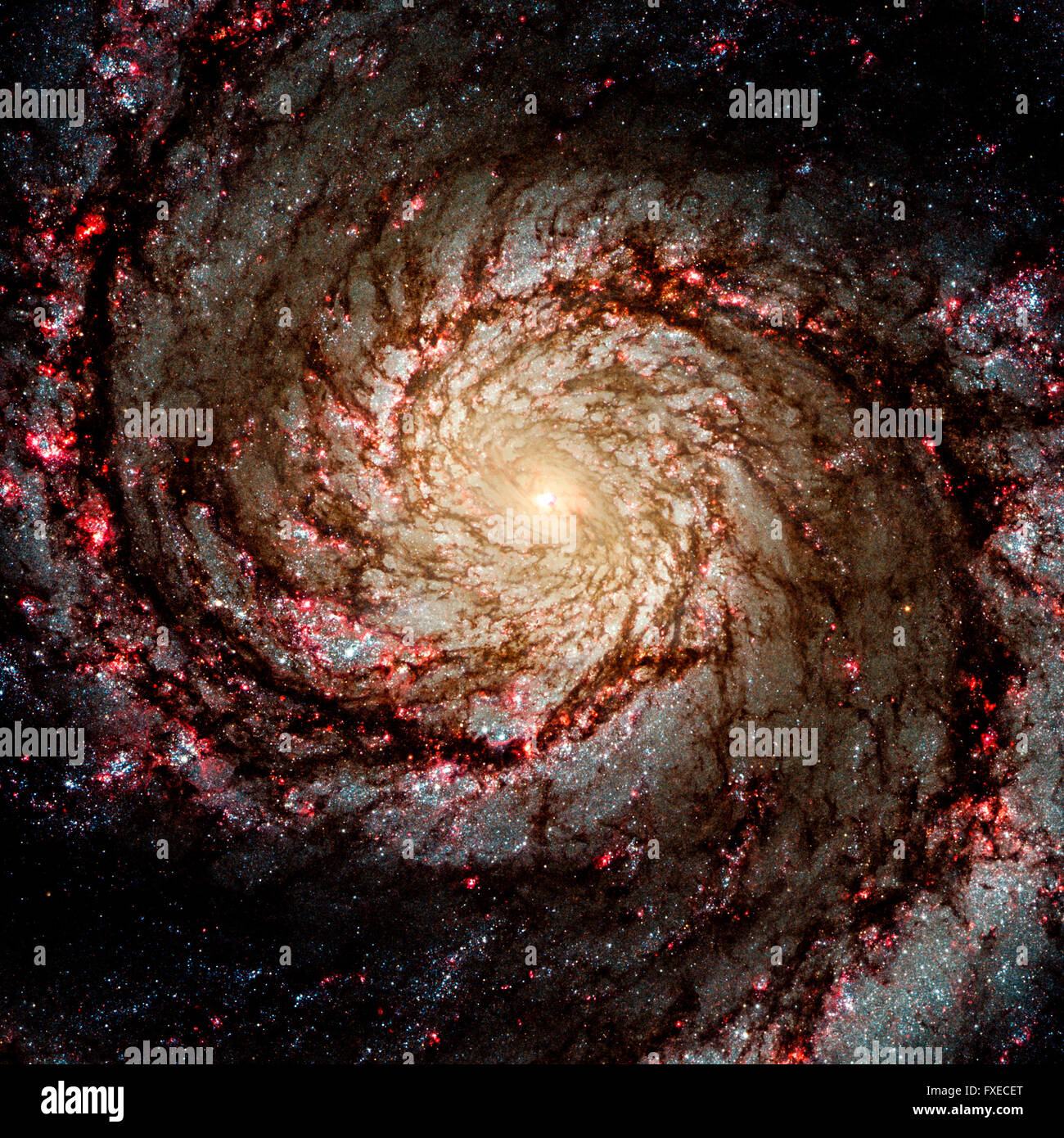 The galaxy system with a bright optical center - Stock Image