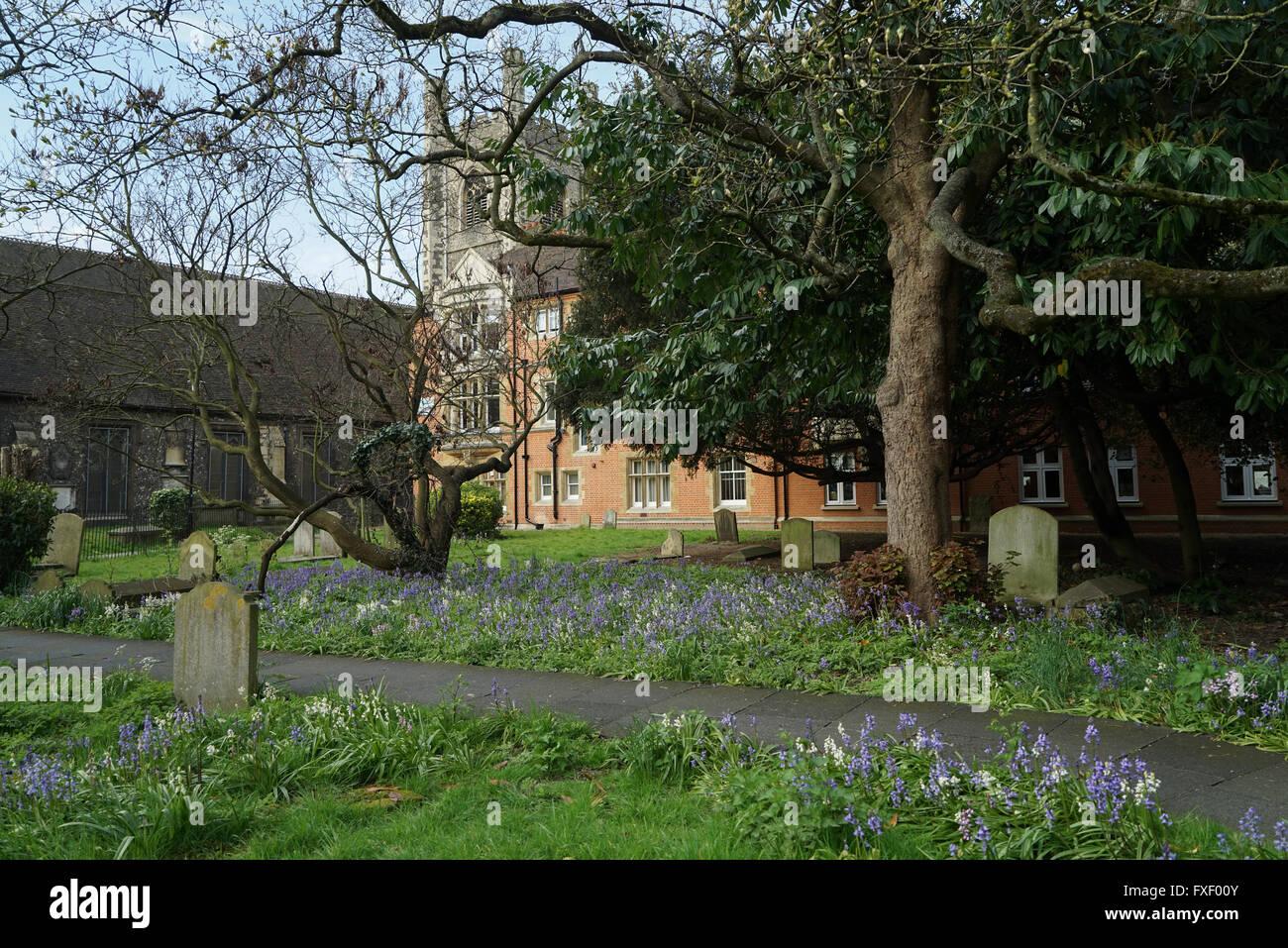 Saint Laurence Churchyard, Reading, Berkshire -1 - Stock Image