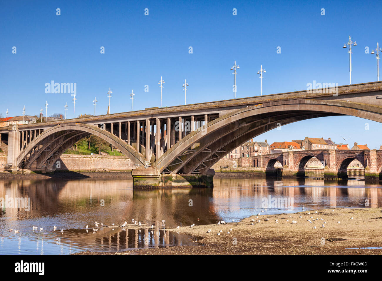 The Royal Tweed Bridge, opened in 1928, and beyond it, Berwick Old Bridge, a grade 1 listed building, opened in - Stock Image