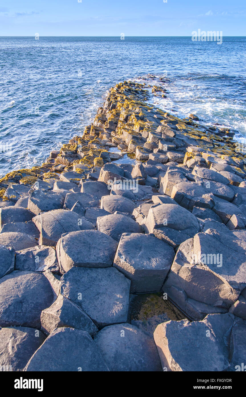 Giants Causeway unique geological hexagonal formations on the coast in County Antrim, Northern Ireland, UK, in sunset - Stock Image