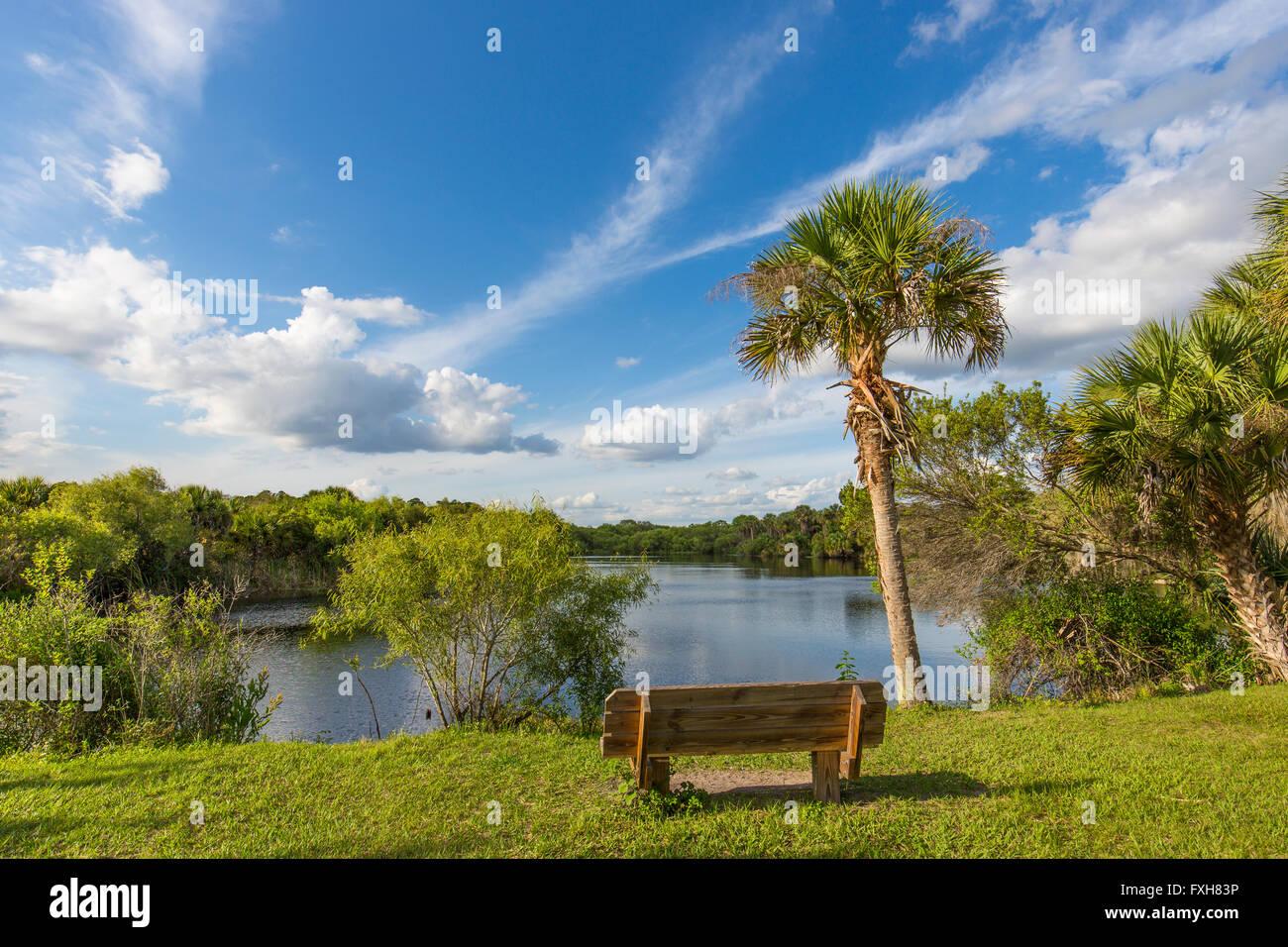 Bench overlooking water in Deer Prairie Creek in  Deer Prairie Creek Preserve in Venice Florida Stock Photo