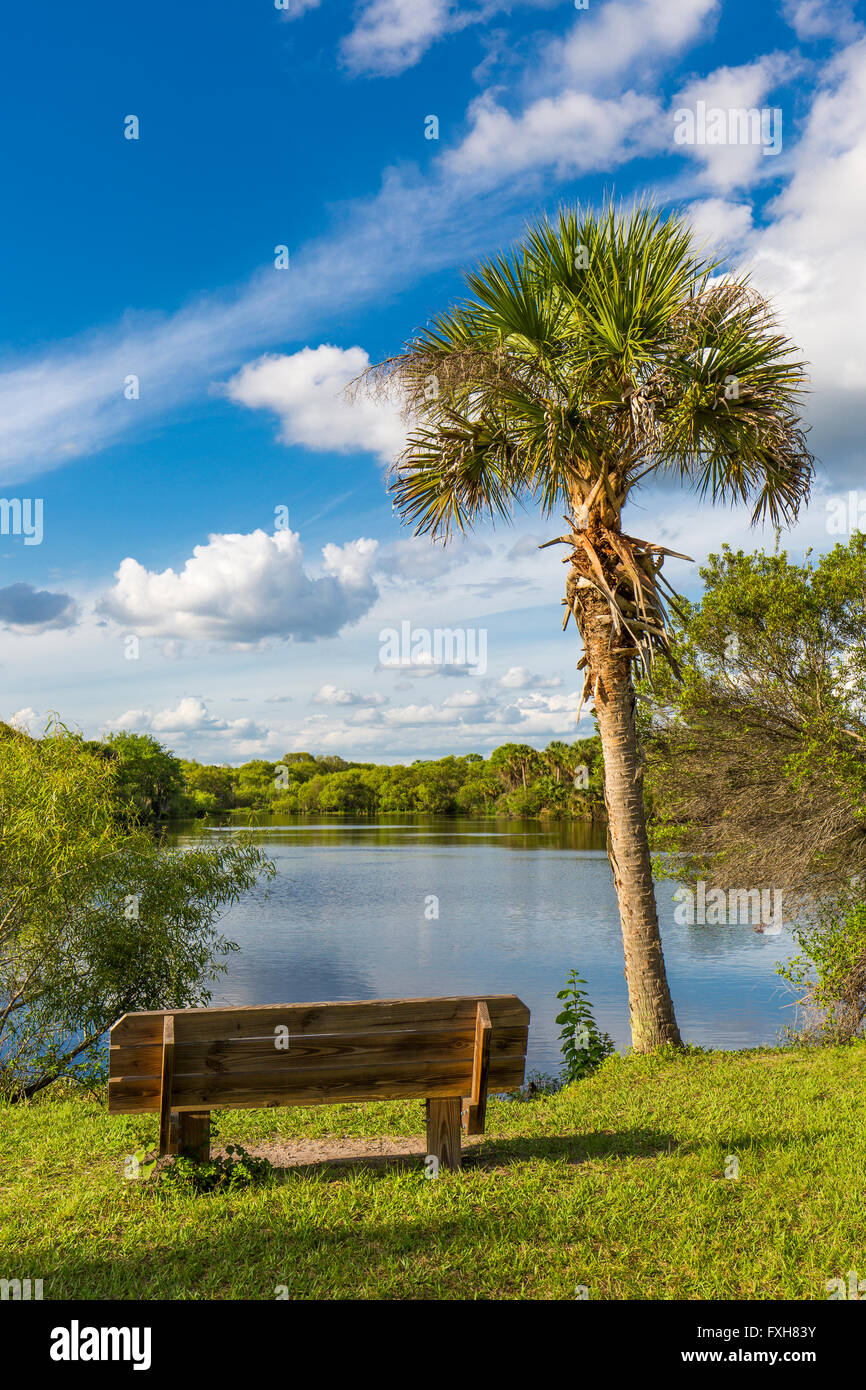 Bench in Deer Prairie Creek in  Deer Prairie Creek Preserve in Venice Florida Stock Photo