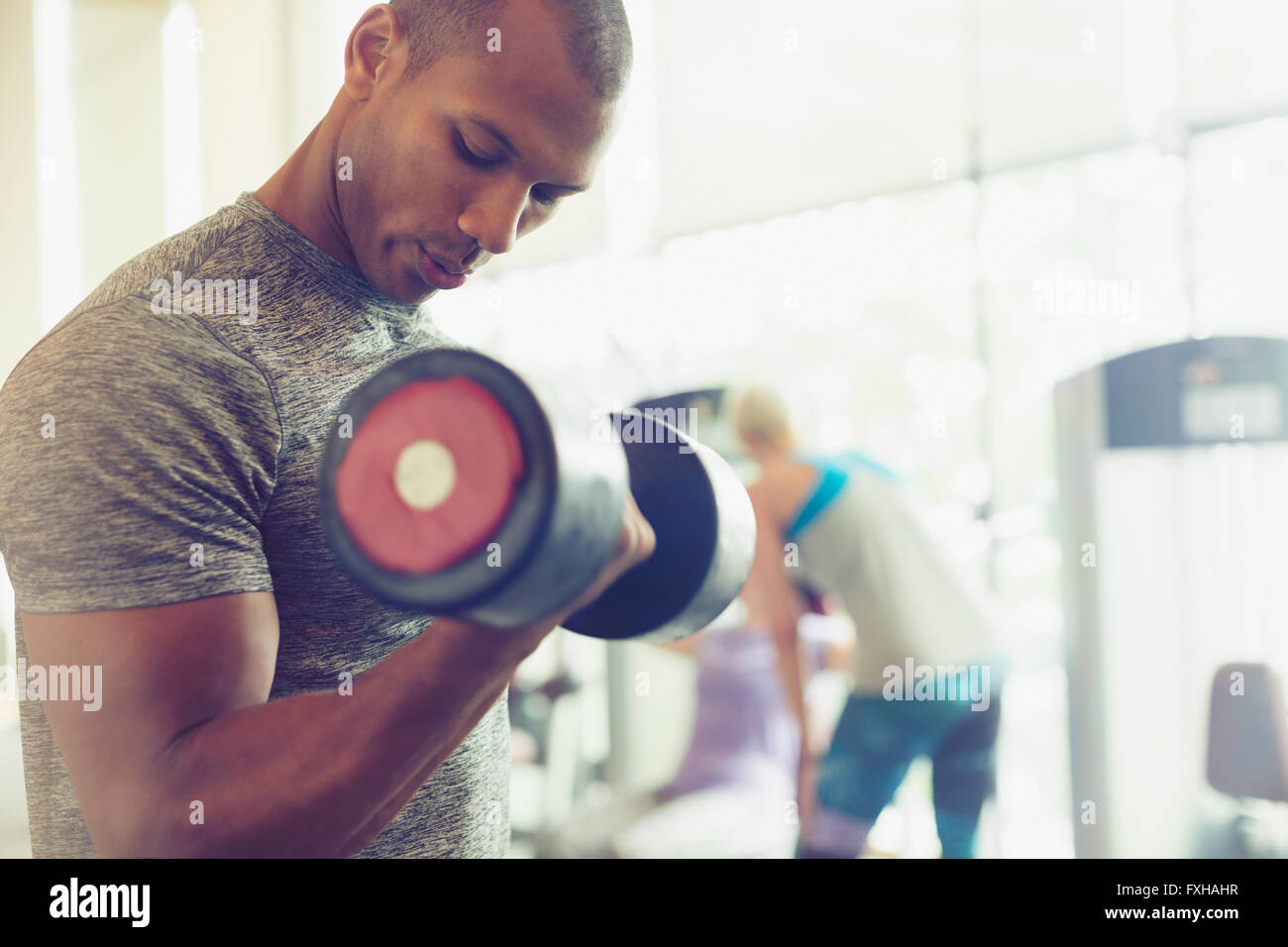 Focused man doing dumbbell biceps curls at gym - Stock Image