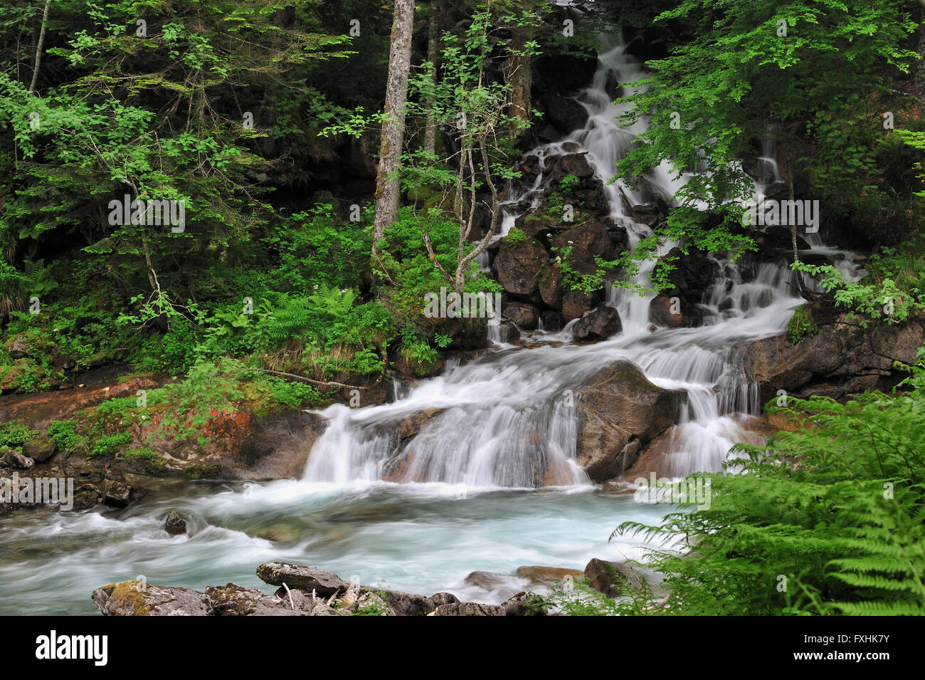 Waterfall near the Pont d'Espagne in the Hautes-Pyrénées near Cauterets, Pyrenees, France - Stock Image