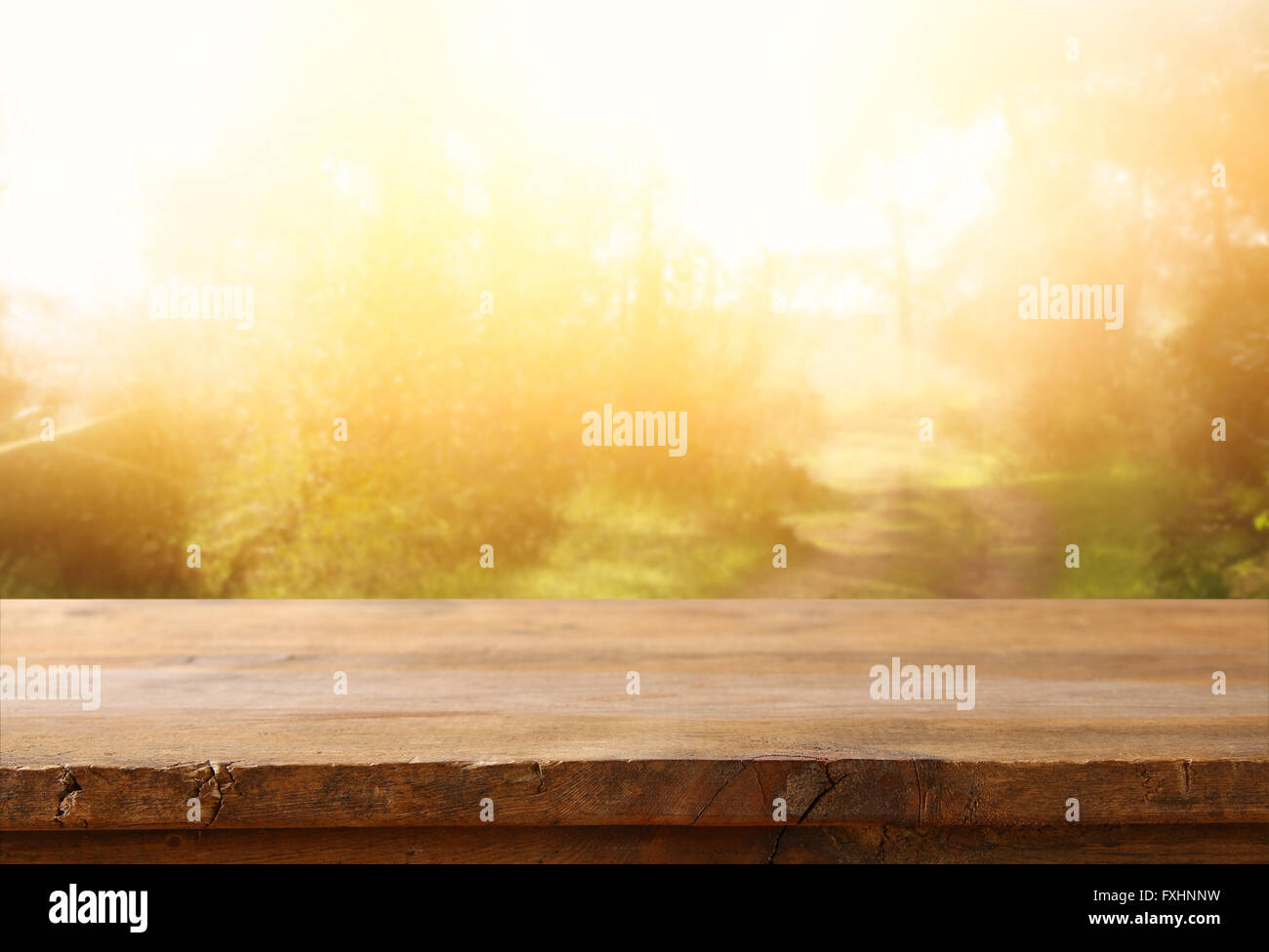front rustic wood boards and abstract forest background. vintage filtered and toned. - Stock Image