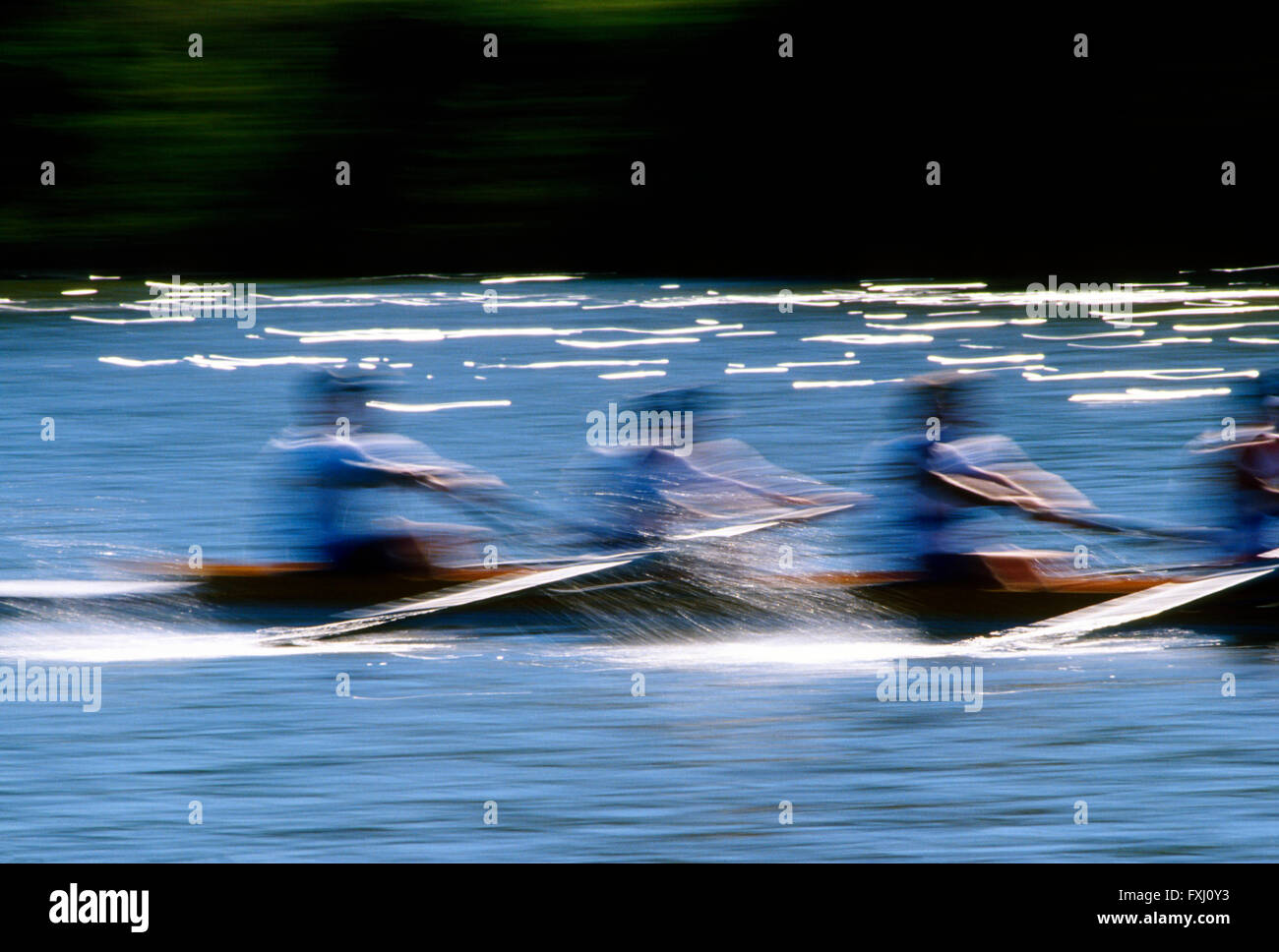 Motion blur pan view of scullers rowing in the Head of the Schuylkill Regatta; Schuykill River; Philadelphia; Pennsylvania; - Stock Image