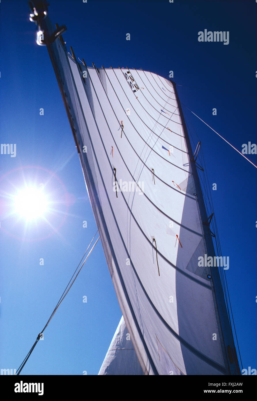 Upward view of main sail on catamaran sailboat; Gulf of Mexico; near Sarasota; Florida; USA - Stock Image