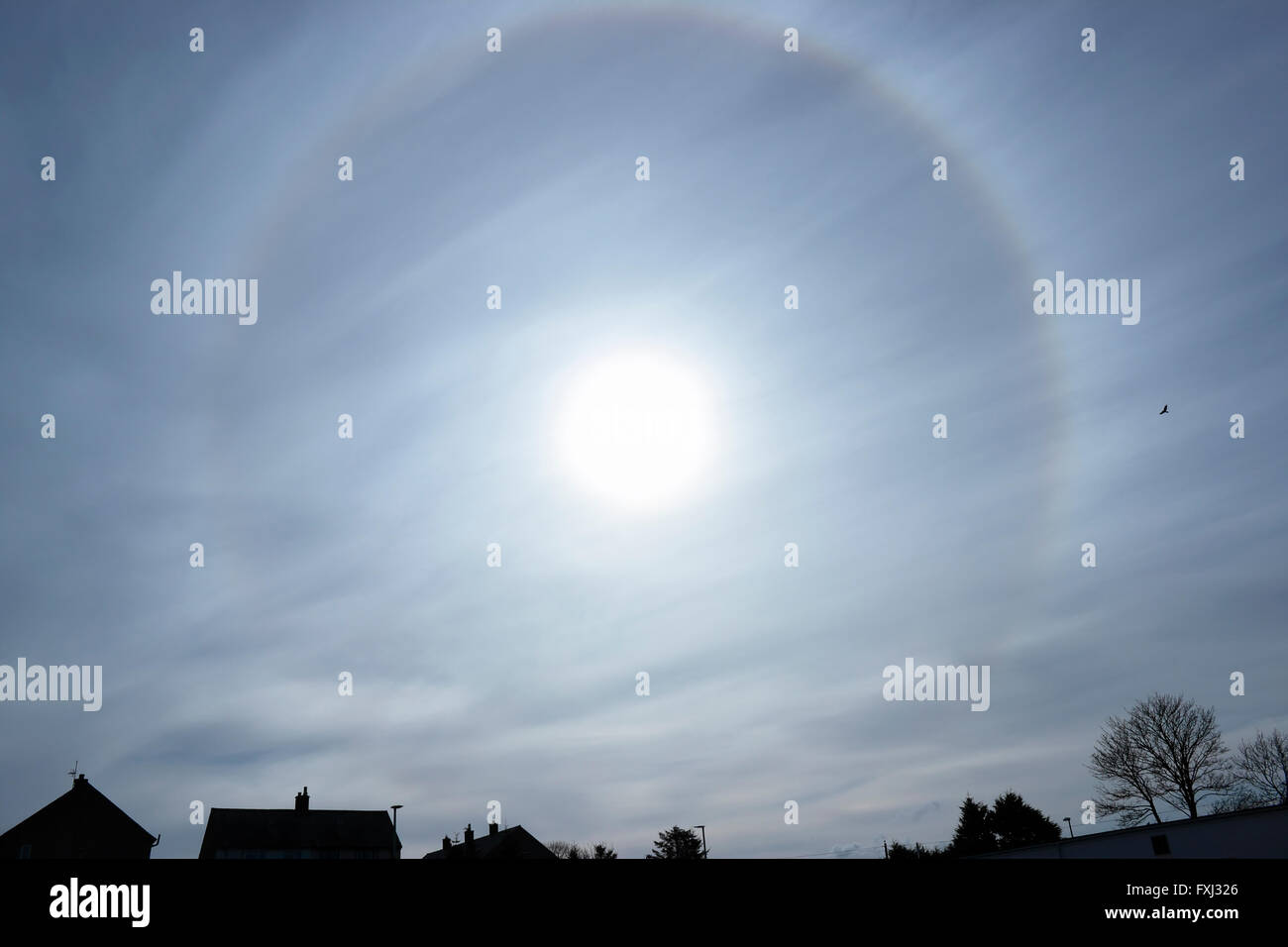 An unusual 22° halo circular rainbow around the sun caused by diffraction of light through ice crystals in - Stock Image
