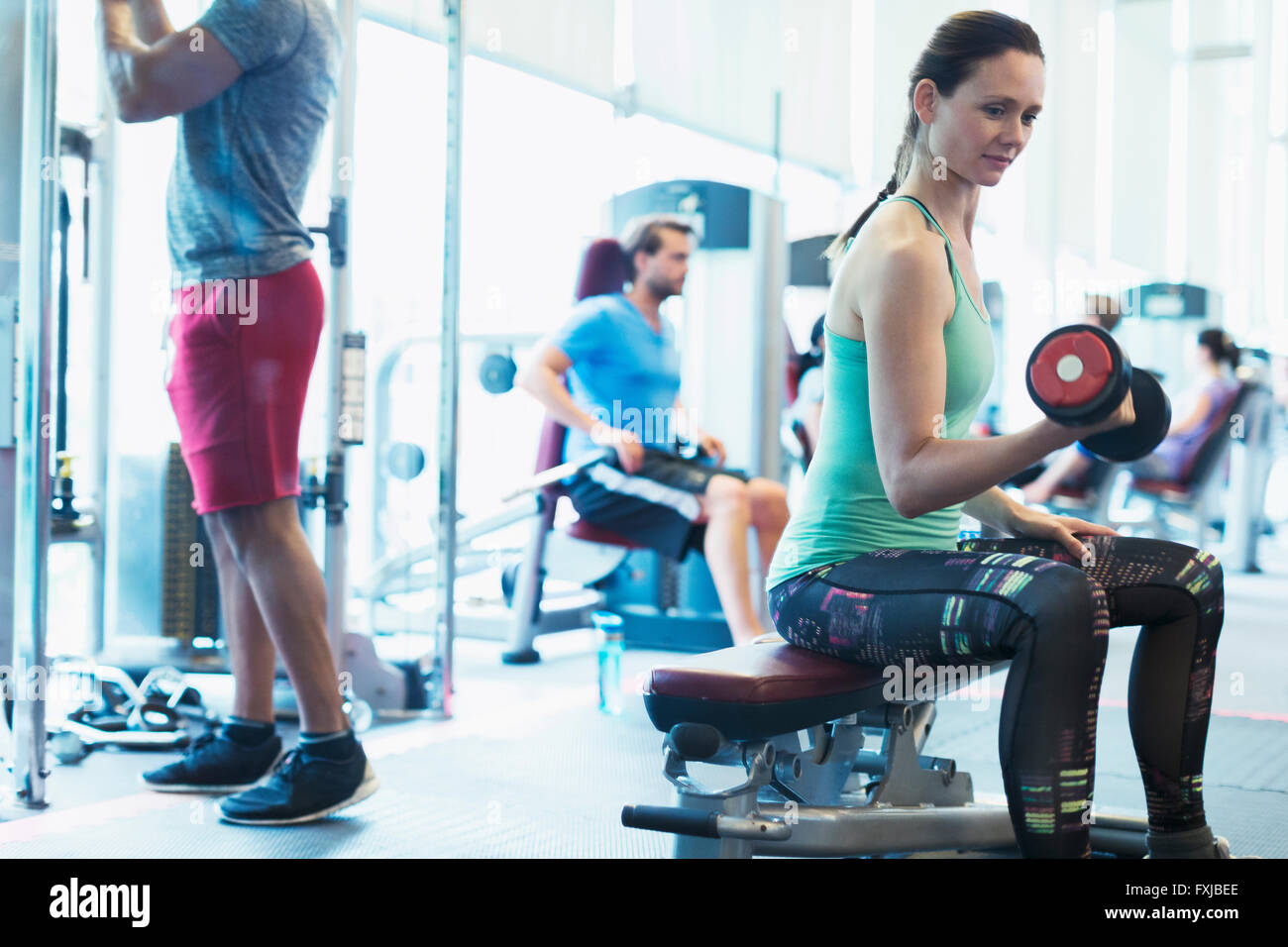 Woman doing dumbbell biceps curls at gym - Stock Image