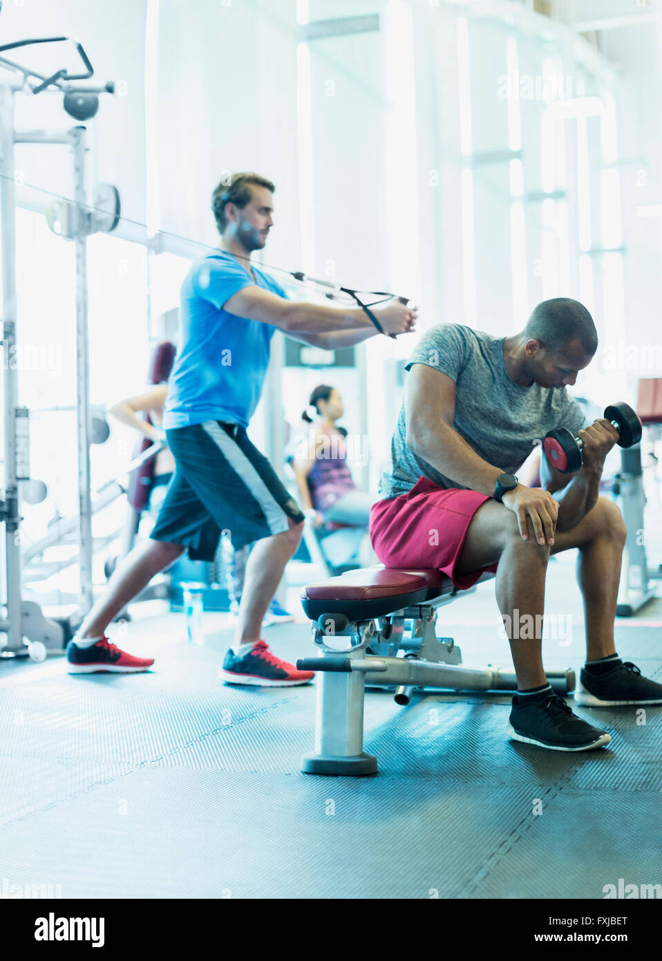 Men working out at gym - Stock Image