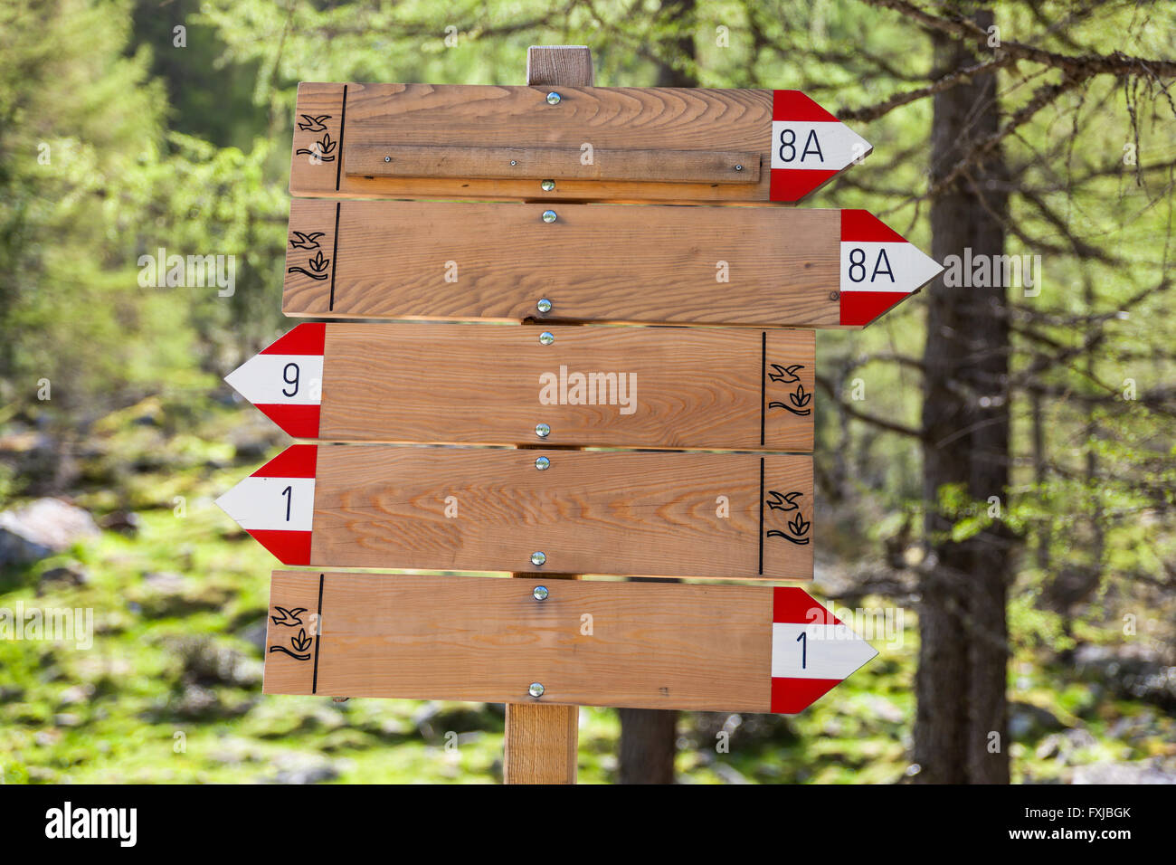 Wooden signpost (empty) in the mountains for writing - Stock Image