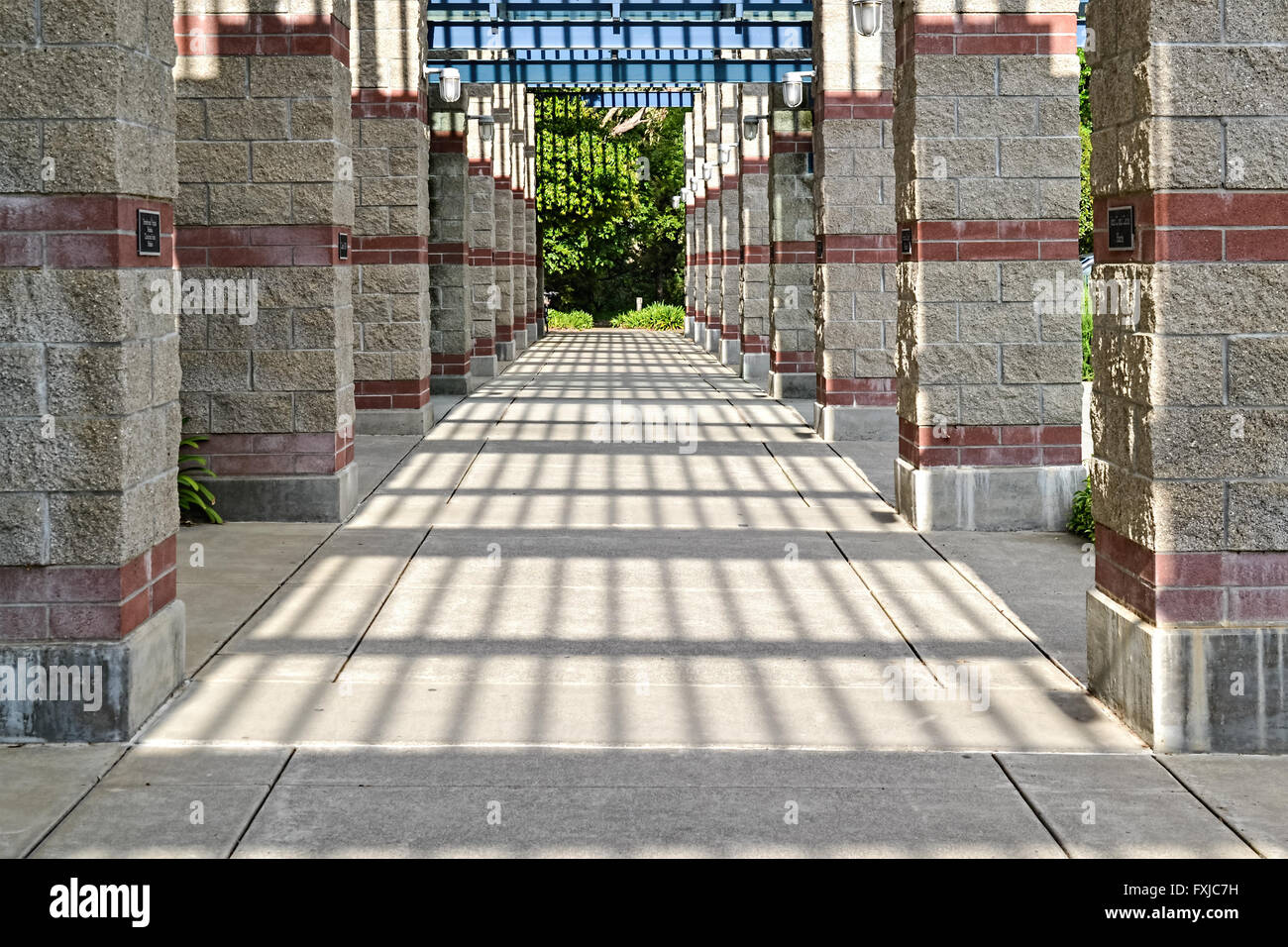 Architectural detail of columns and light at the Walter A. Buehler Alumni center - Stock Image