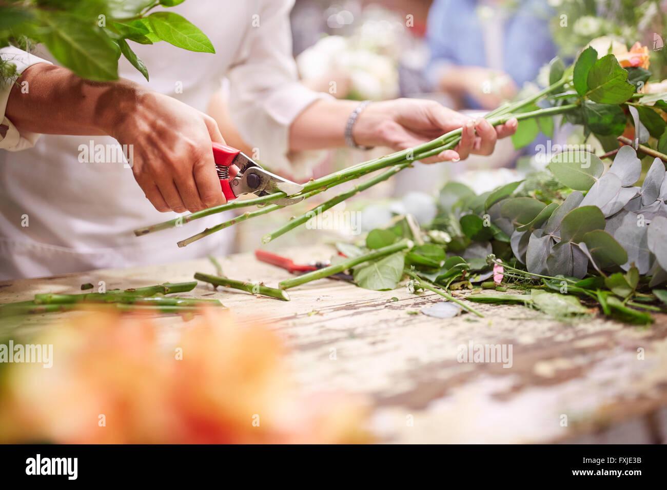 Florist trimming flower stems at flower shop - Stock Image