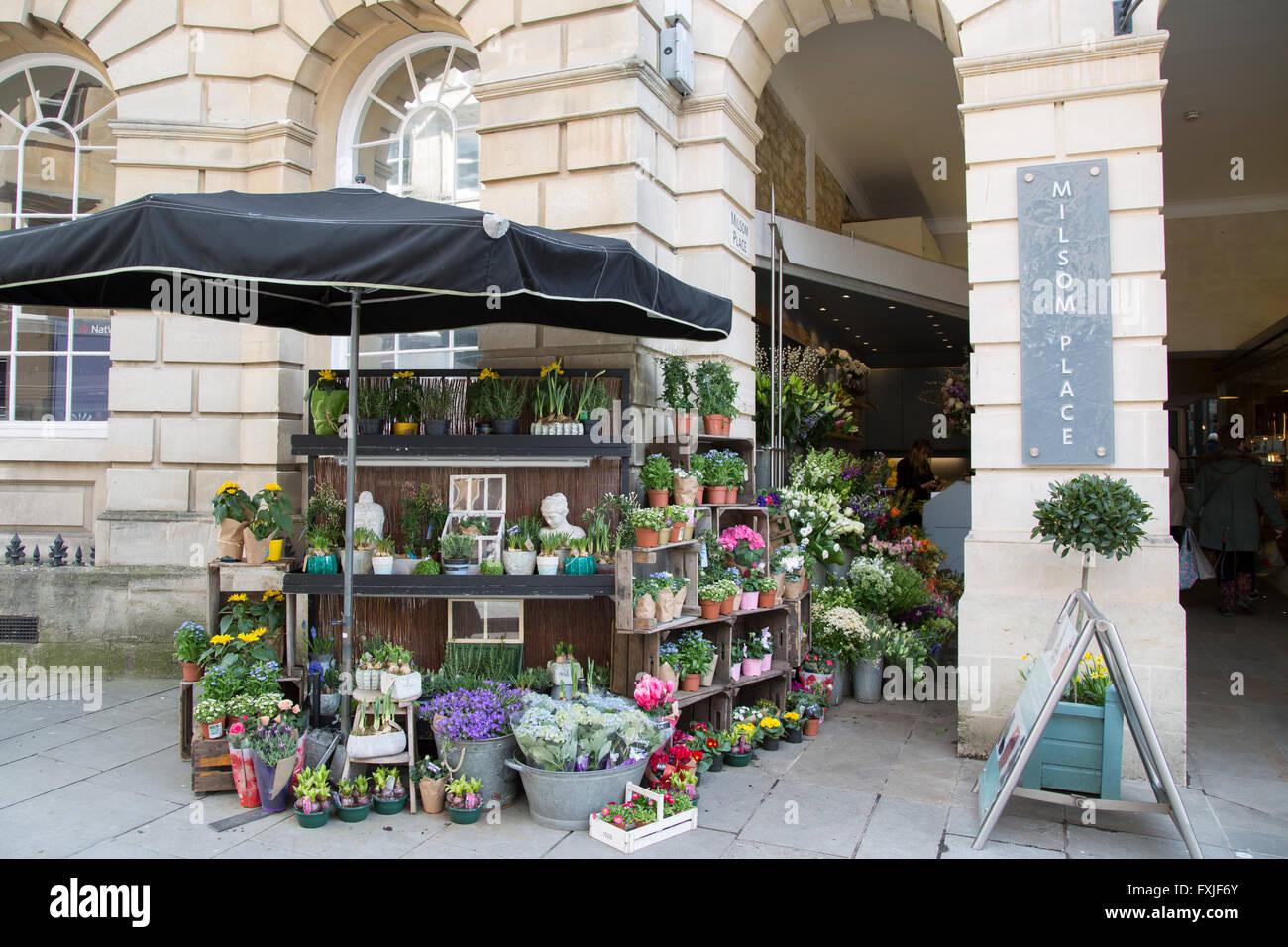2e3155eab7e1 Milsom Place Florist; Bath; England; UK Stock Photo: 102439987 - Alamy
