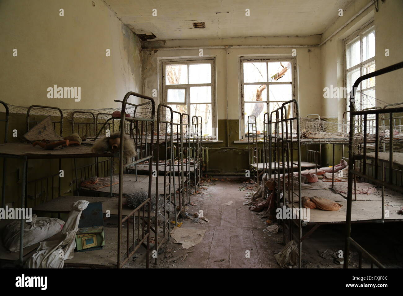 Nursery, just outside of Chernobyl, Ukraine - Stock Image