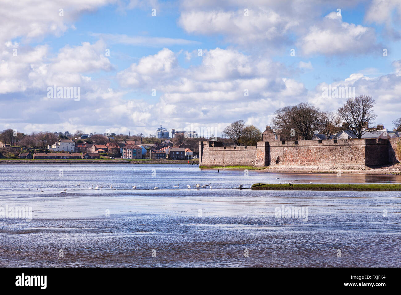 The River Tweed and the town walls of Berwick-upon-Tweed, Northumberland, England, UK - Stock Image