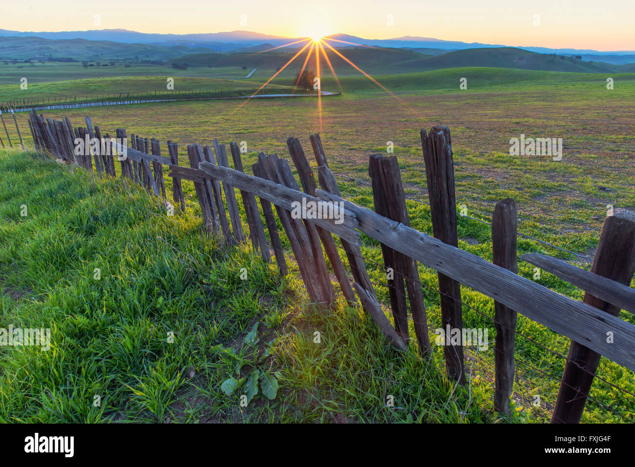 Rural Sunstar with Fence Line - Stock Image