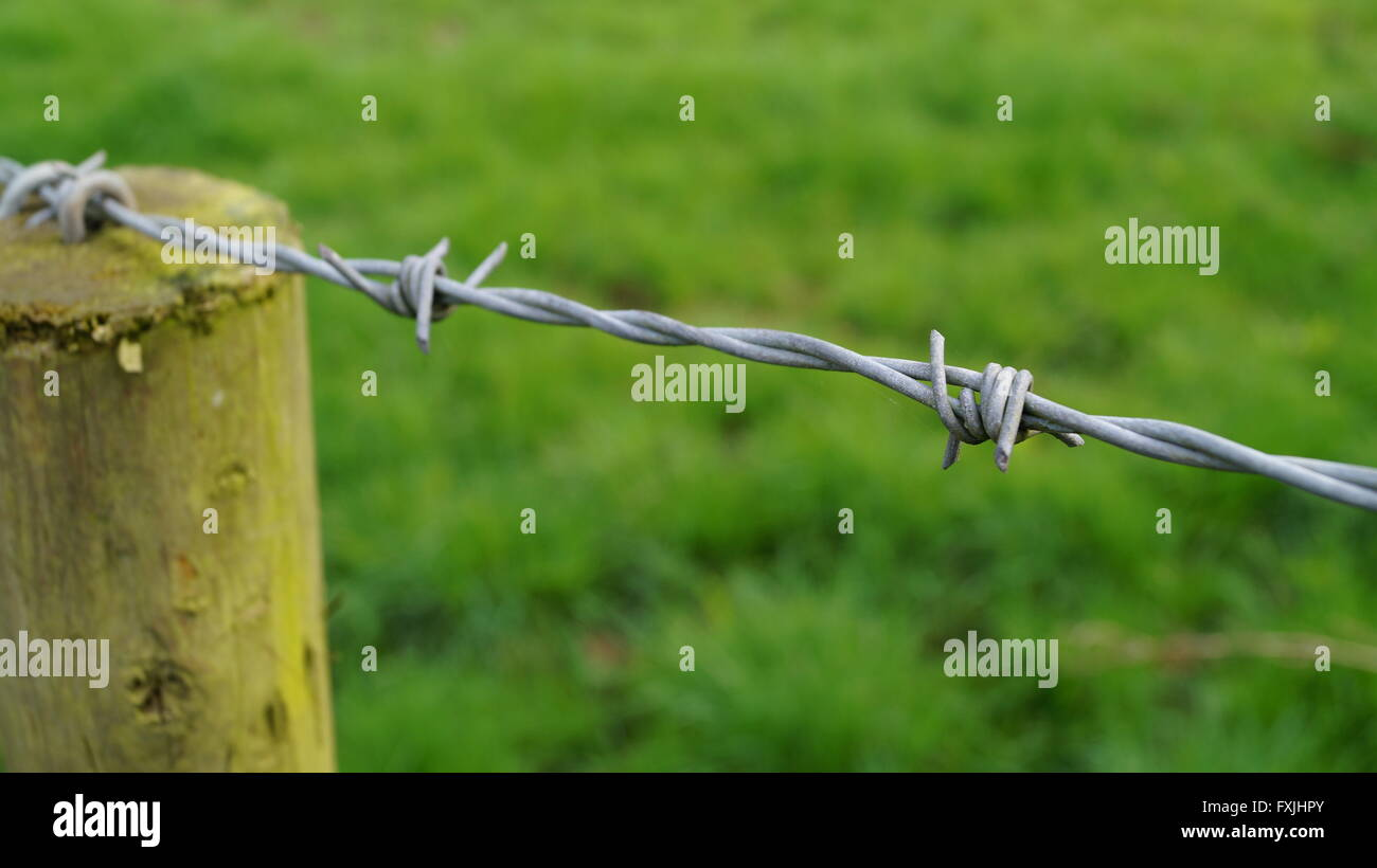 High angle view of barbed wire fence and wooden post - Stock Image