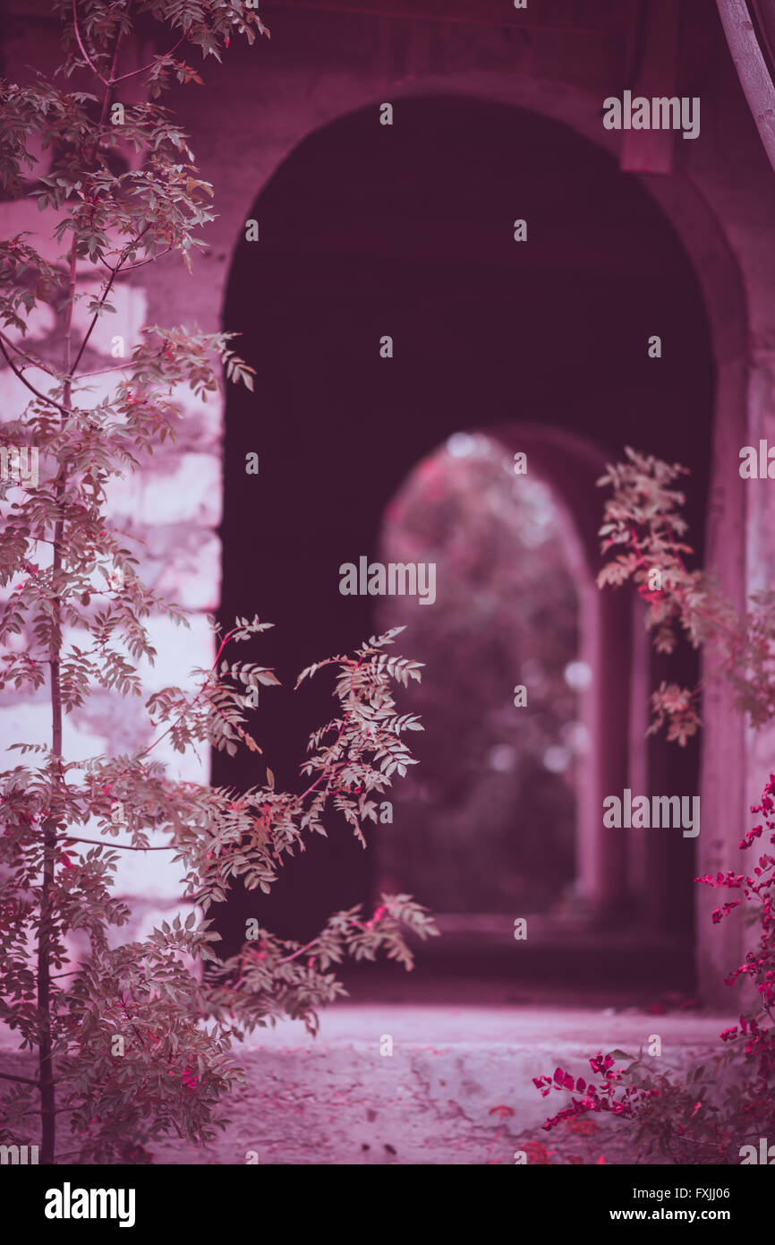 Arched gleams - Stock Image