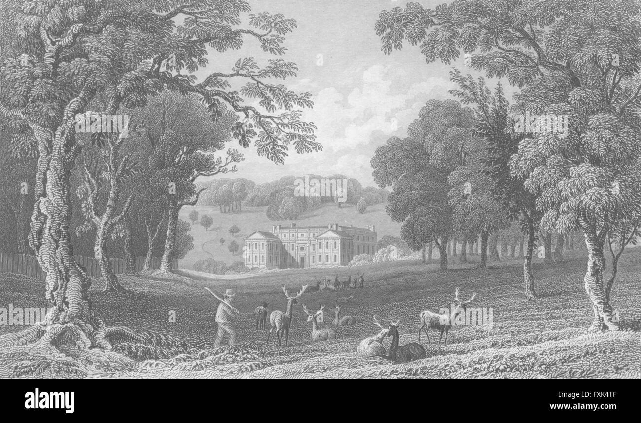 ISLE OF WIGHT: Appuldurcombe Pk Lord Yarborough's, antique print c1840 - Stock Image