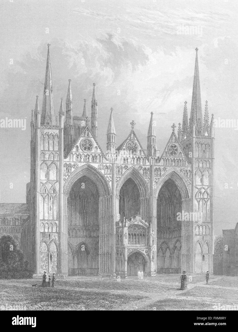 CAMBS: Peterborough cathedral, antique print 1836 - Stock Image