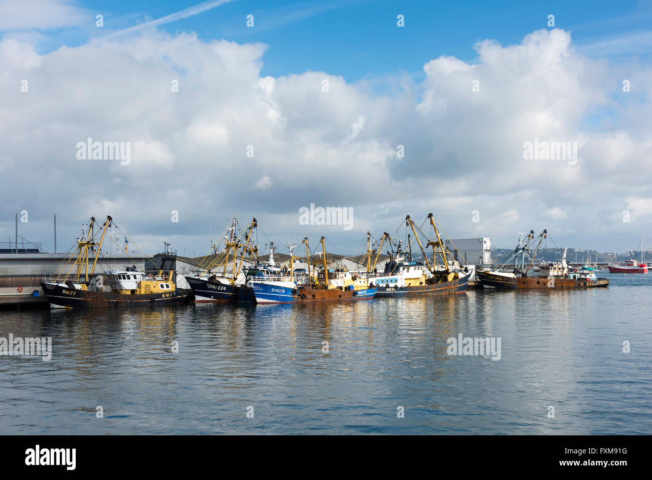 Commercial fishing boats moored at the docks in Brixham Devon UK - Stock Image
