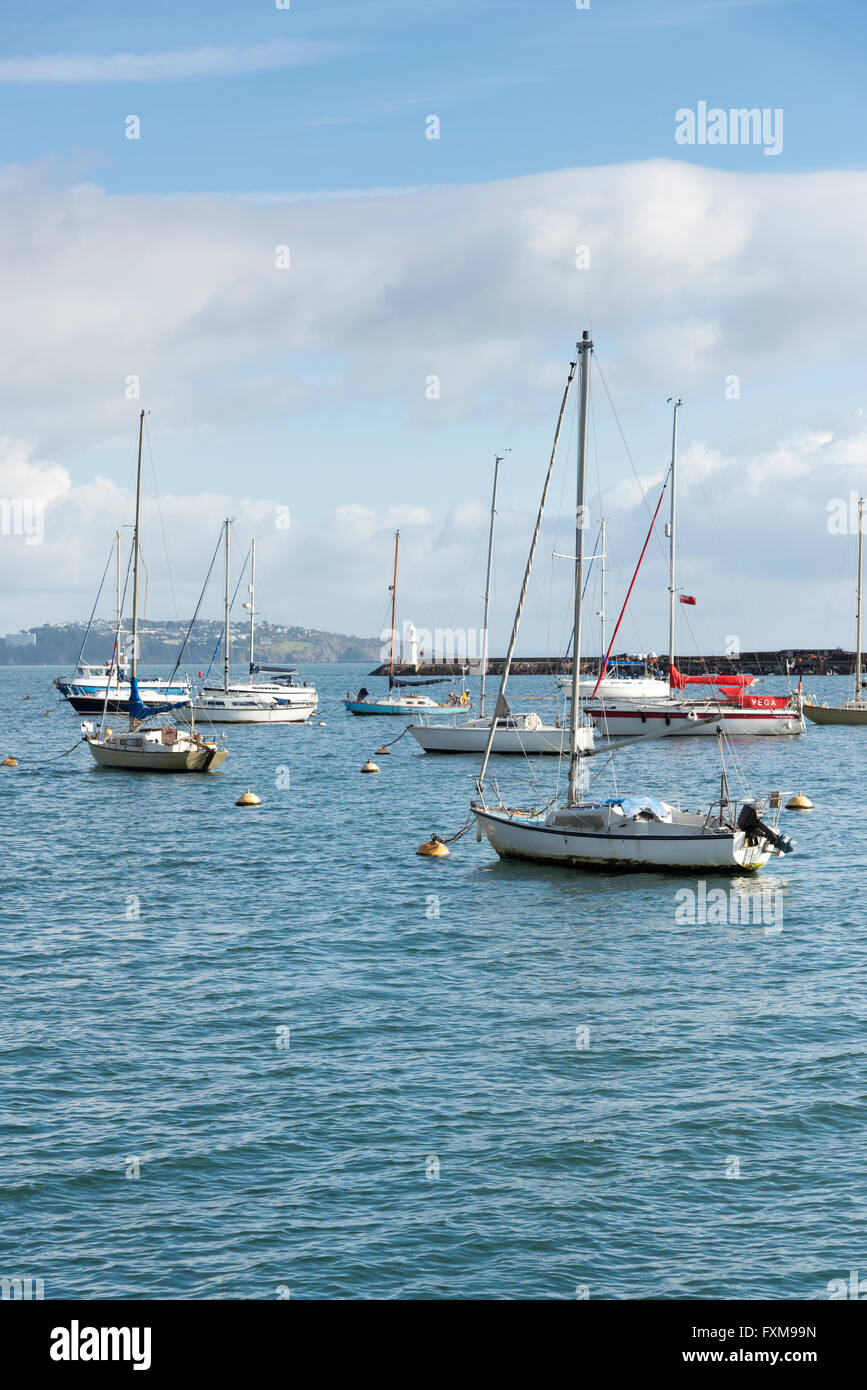 Yachts moored in the harbour at Brixham Devon UK - Stock Image