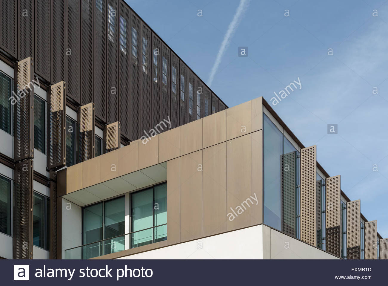Maurice Wohl Clinical Neuroscience Institute - Stock Image
