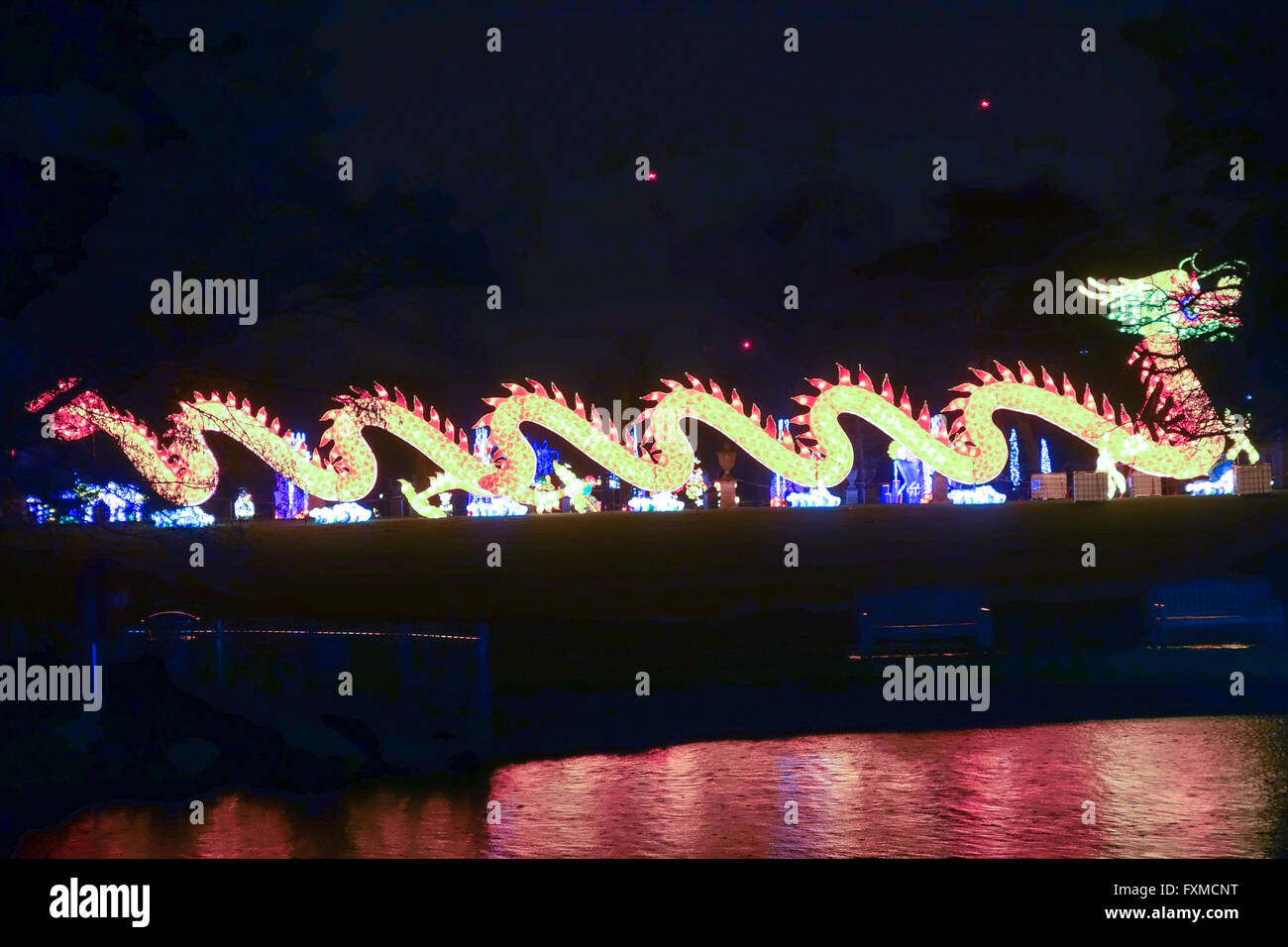 A dragon at the Magical Lantern Festival celebrates the Year of the Monkey at Chiswick Park in London. - Stock Image