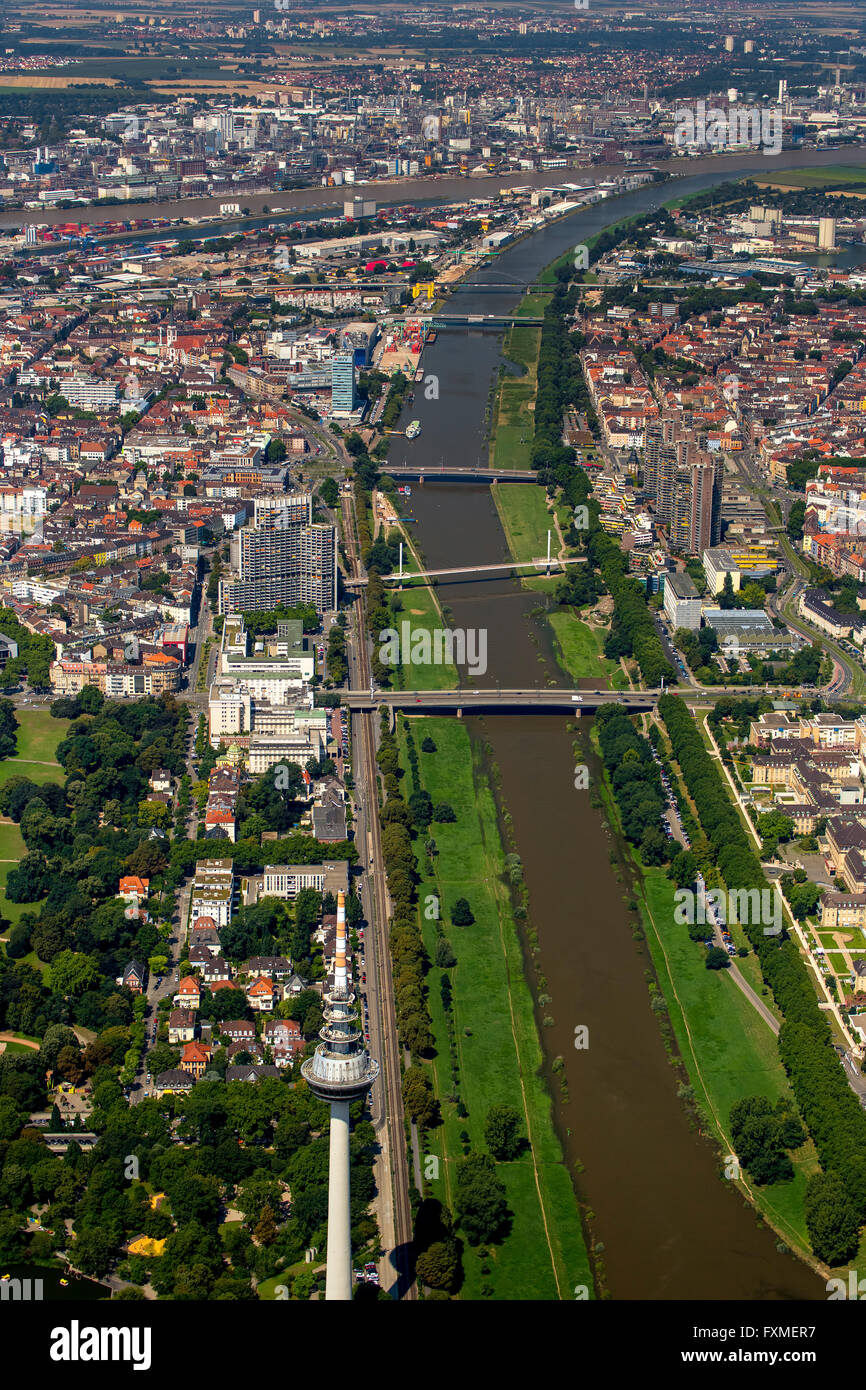Aerial view, overlooking the River Neckar in Mannheim, Mannheim, Baden-Württemberg, Germany, Europe, Aerial view, Stock Photo